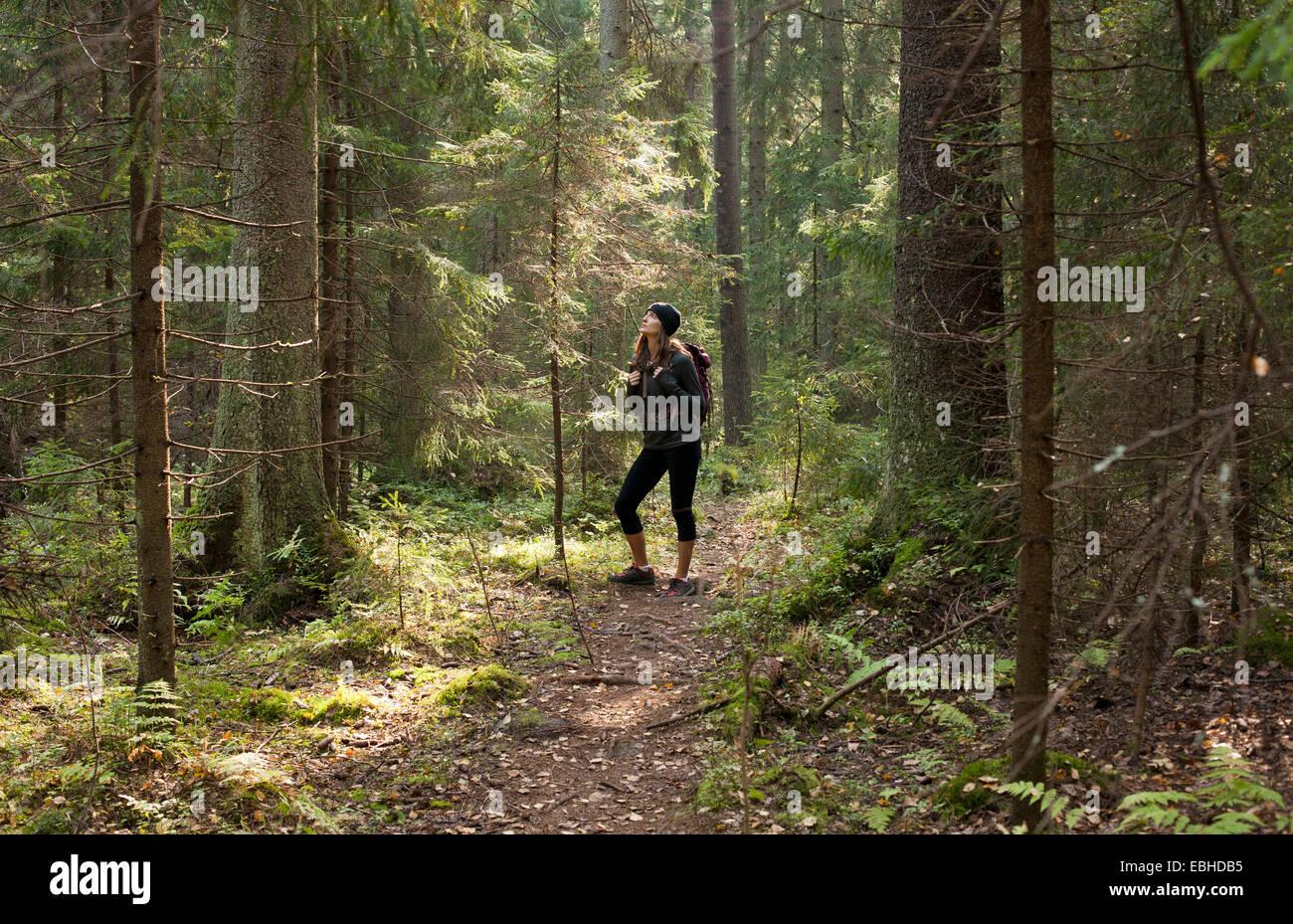 Frau Wandern durch Wald, Helsinki, Finnland Stockbild