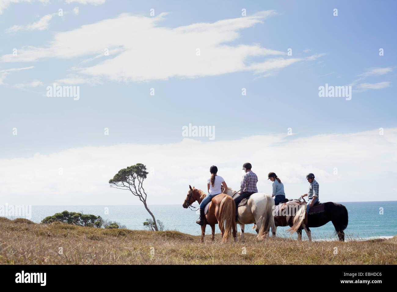 Pferd Reiten, Pakiri Beach, Auckland, Neuseeland Stockbild