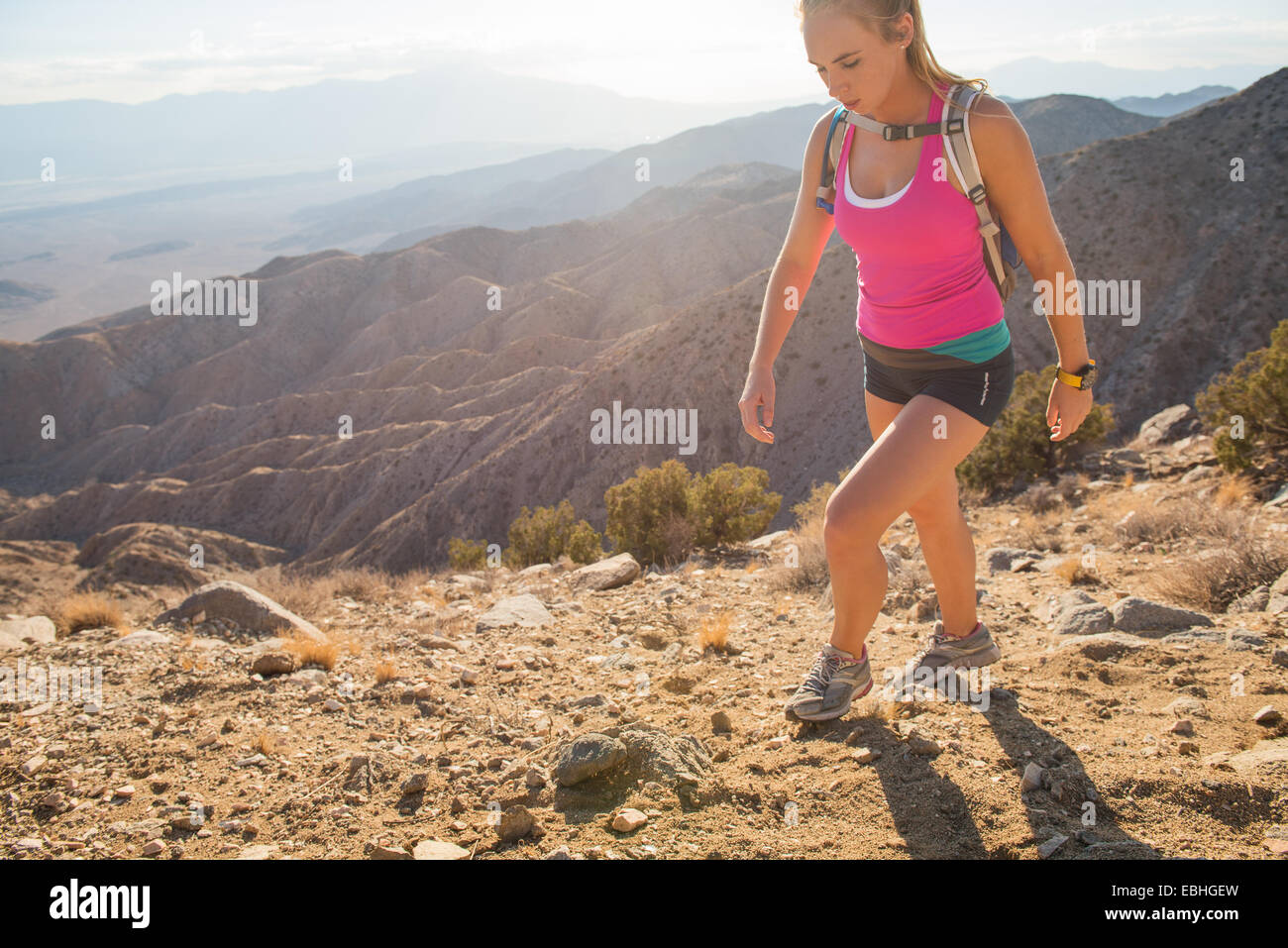 Frau Wandern, Joshua Tree Nationalpark, Kalifornien, USA Stockbild