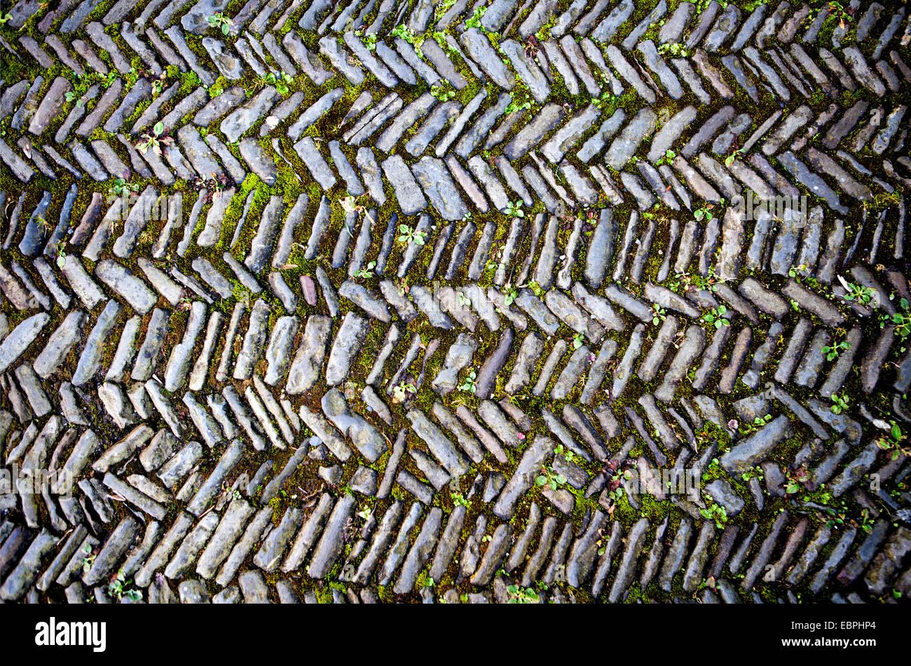 Alte Straße, Bürgersteig mit Fischgrätenmuster, Alter Weg, Pflasterung Im Fischgrätmuster, Deutschland, Europa, Stockfoto