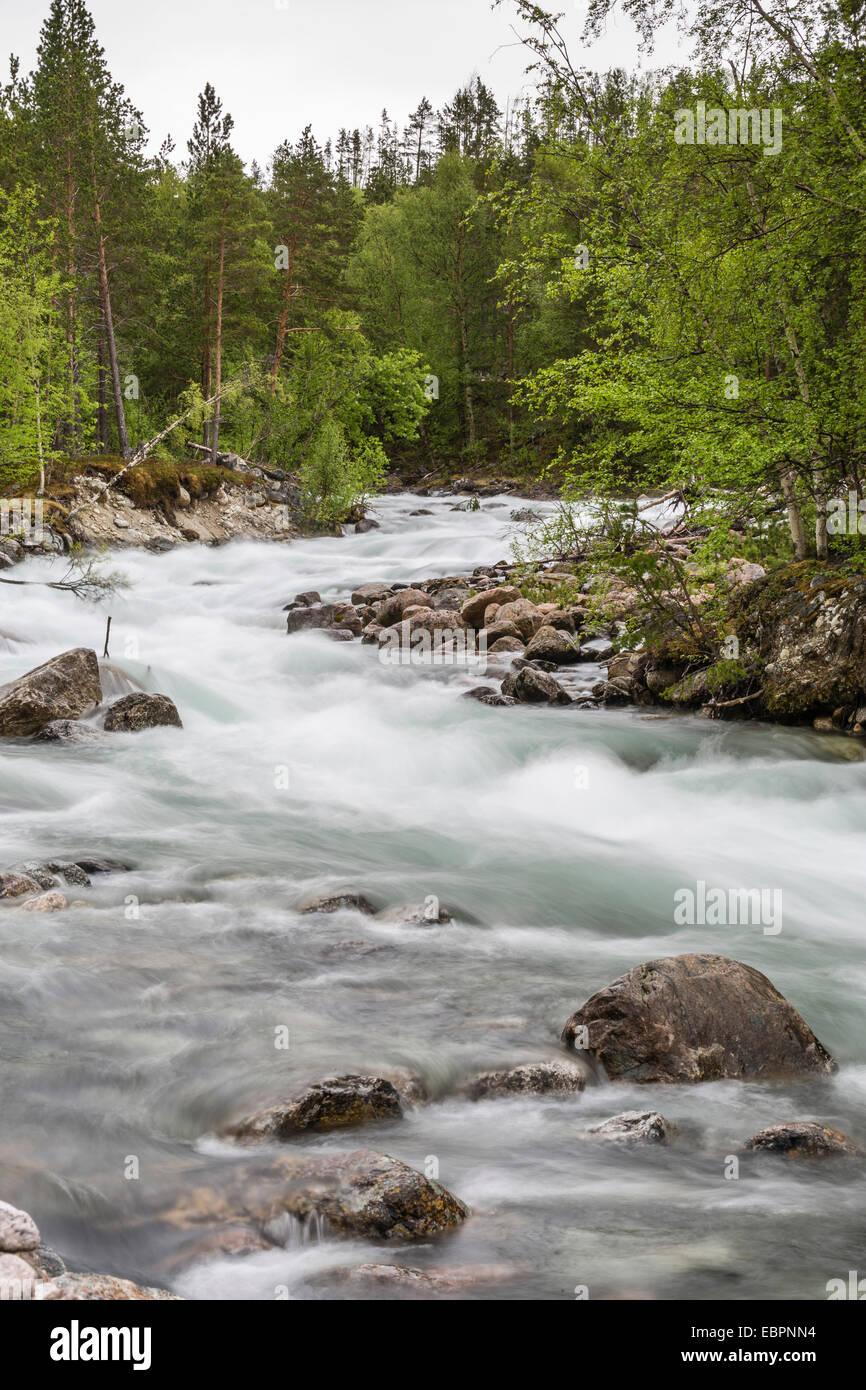 Slow-Motion blur Detail eines reißenden Flusses in Hellmebotyn, Tysfjord, Norwegen, Skandinavien, Europa Stockbild