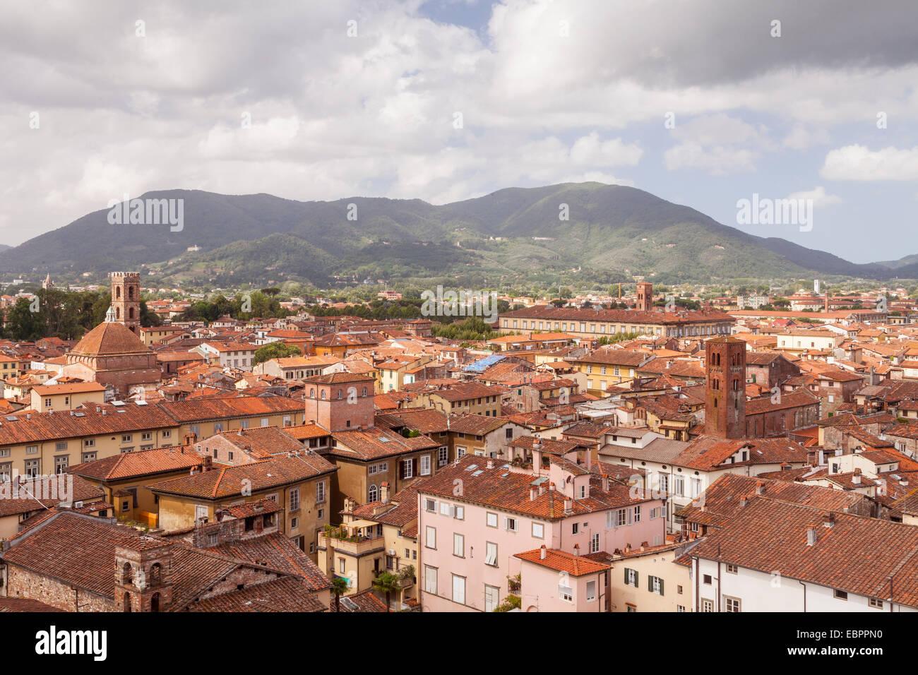 Die Dächer der Altstadt von Lucca, Toskana, Italien, Europa Stockbild