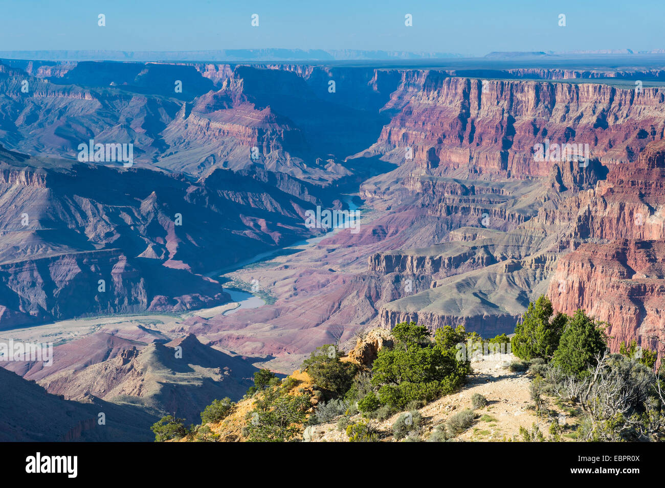 Wüste-Aussichtspunkt über den Grand Canyon, UNESCO World Heritage Site, Arizona, Vereinigte Staaten von Stockbild