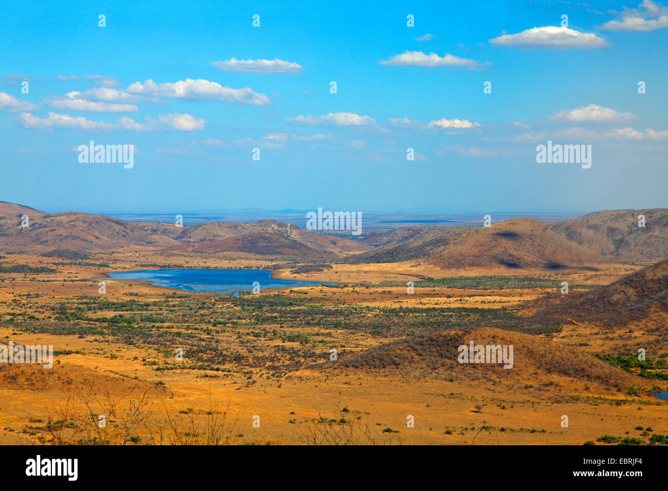 Blick vom Lenong Sicht auf Mankwe See, Süd-Afrika, North West Province, Pilanesberg National Park Stockbild