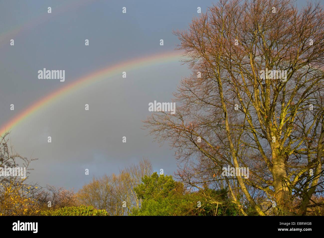 doppelter Regenbogen, Deutschland Stockbild