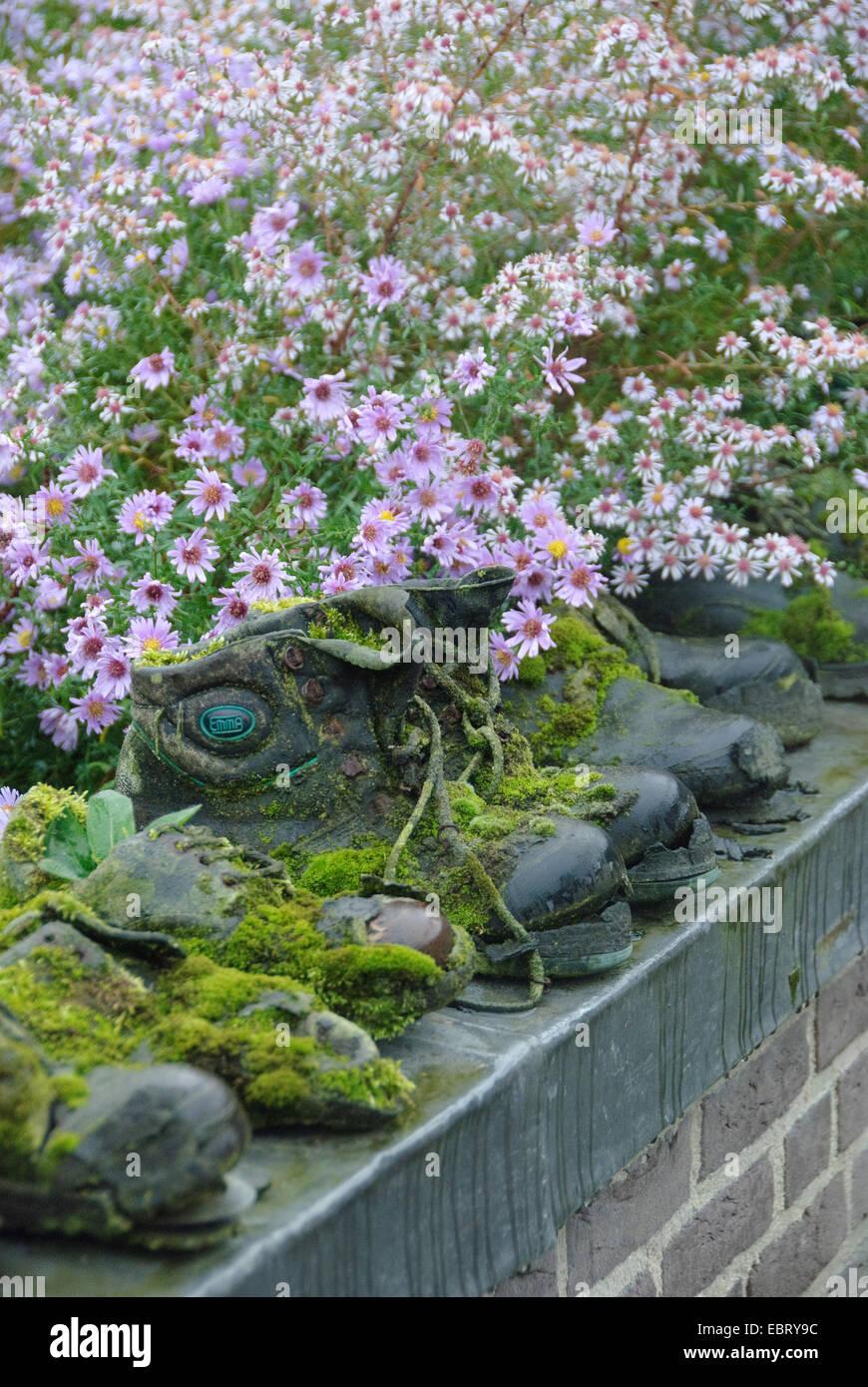 moosigen Garten Schuhe an eine Wand im Garten Stockbild