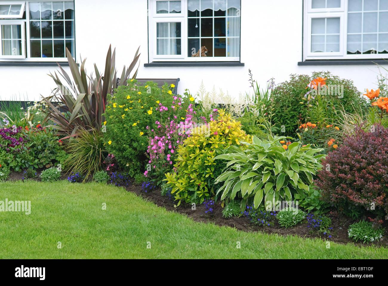 Irische Frontgarden mit blühenden Gartenpflanzen, Irland, Achill Island Stockbild