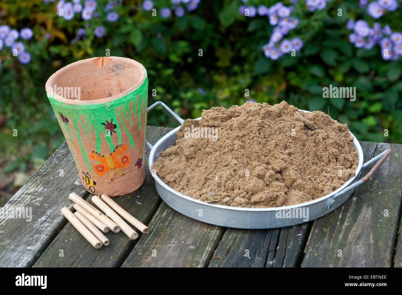 Arbeitsmaterialien für ein Insekt Zucht-Hilfe, Deutschland Stockbild