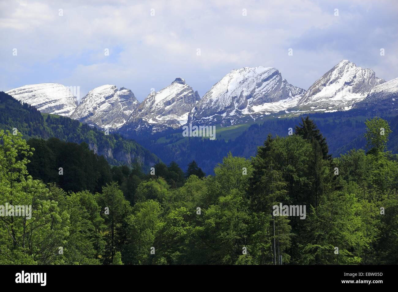 die Bergkette Churfirsten in der Appenzeller Alpen, Schweiz, St. Gallen, Toggenburg Stockbild