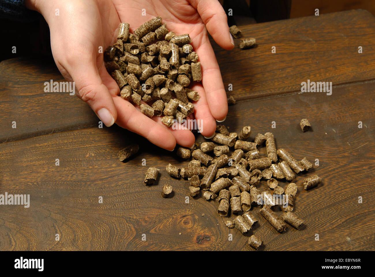 Alternative Biokraftstoff aus Stroh Verbrennung in Öfen Stockbild