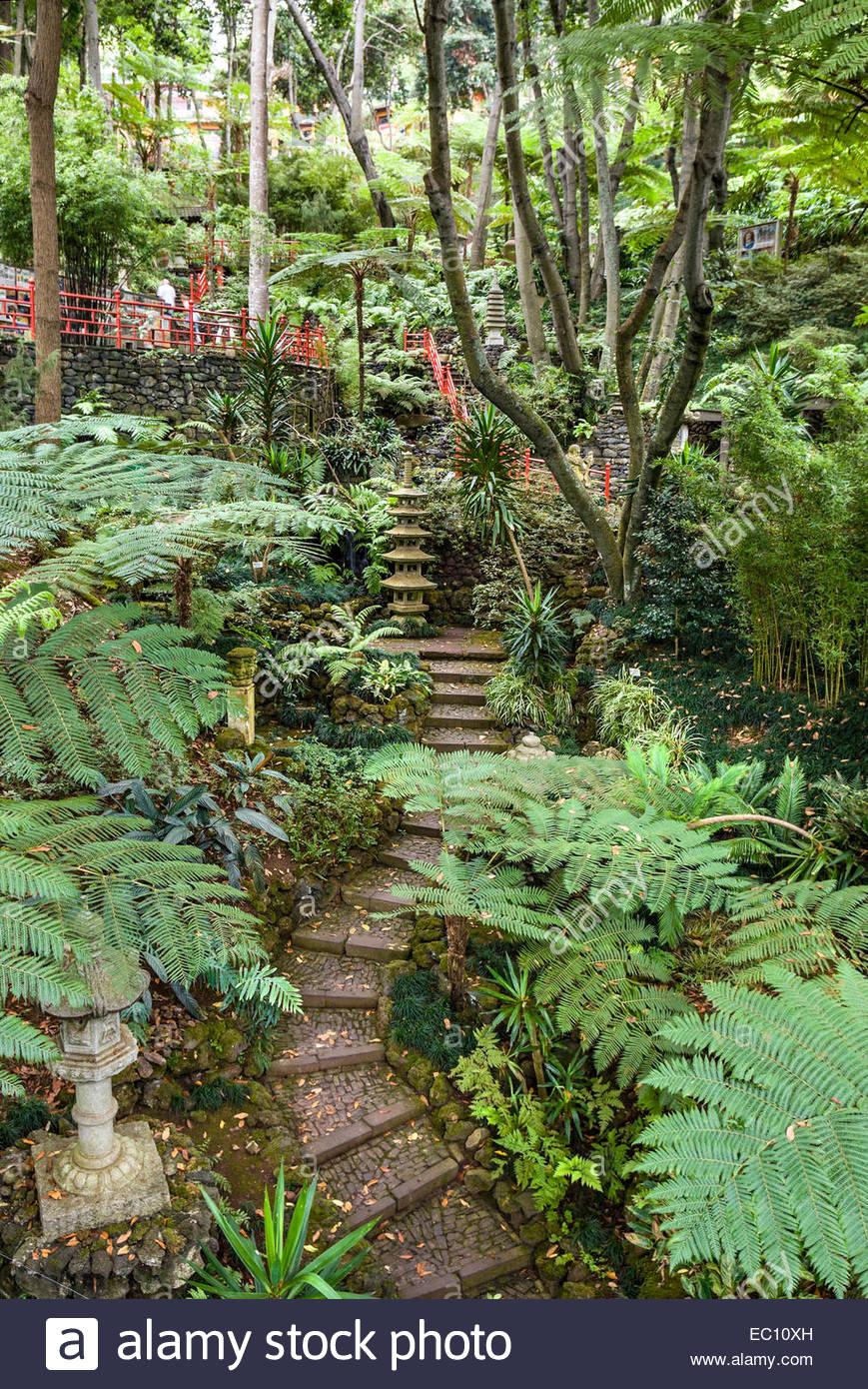 Asiatischer Garten In Den Garten Monte Palace In Funchal Madeira