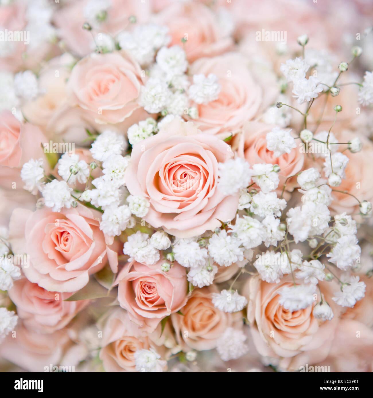 Weiche Rosa Hochzeit Bouquet Mit Rosenbusch Und Kleine Weisse Blume