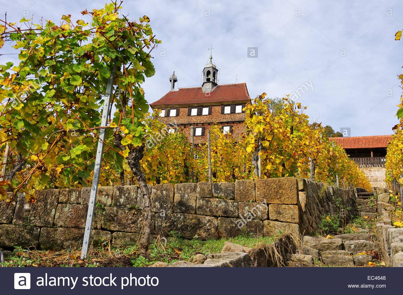 Blick Auf Esslingen Schloss Und Weingut Unten Esslingen Bei