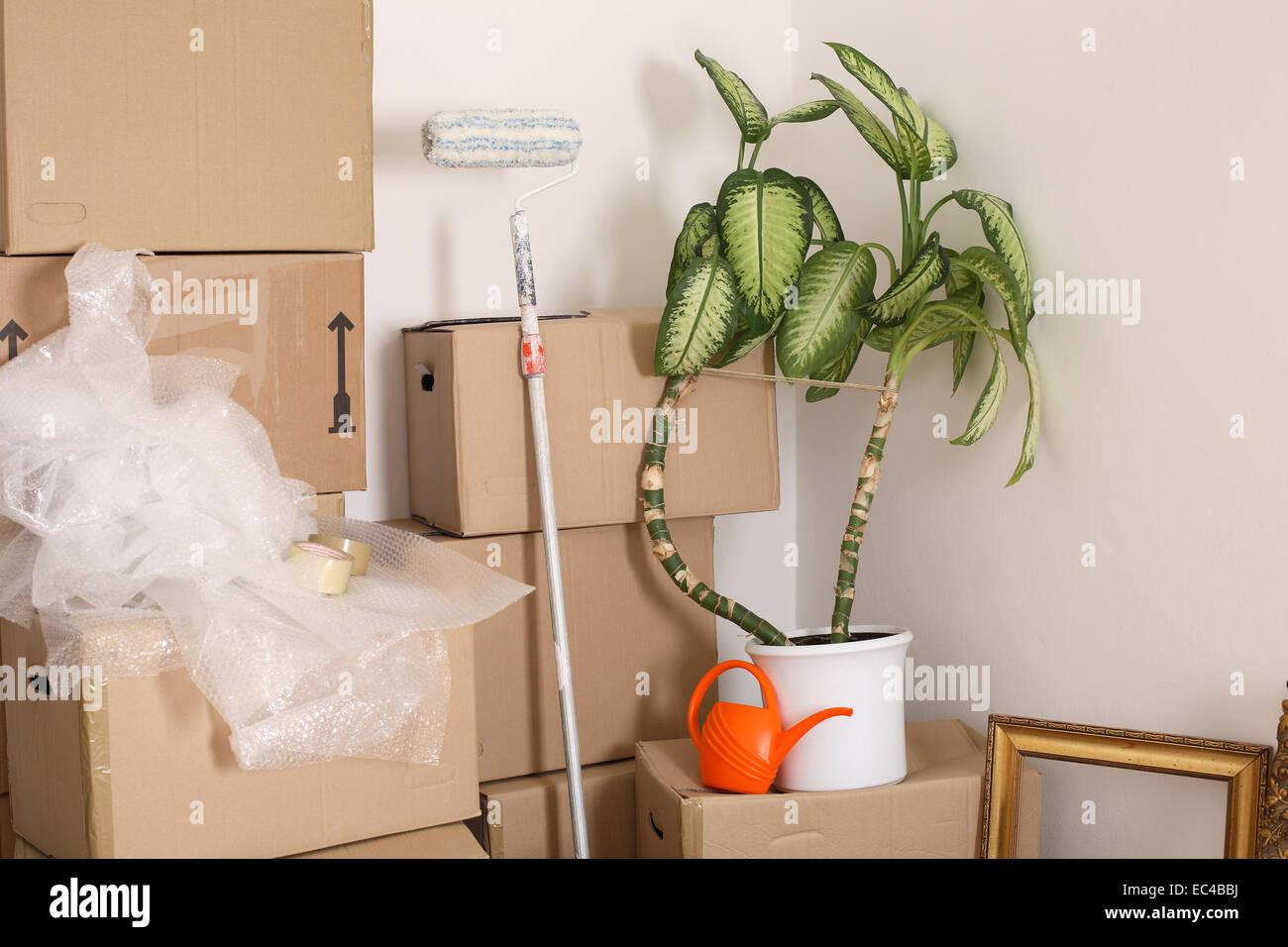 Verschieben von Kisten, Ewer, Haus Plant, Malerei Instrument ...