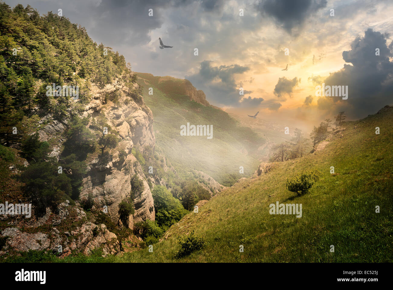 Vögel über Felsen und Nebel bei Sonnenaufgang Stockbild