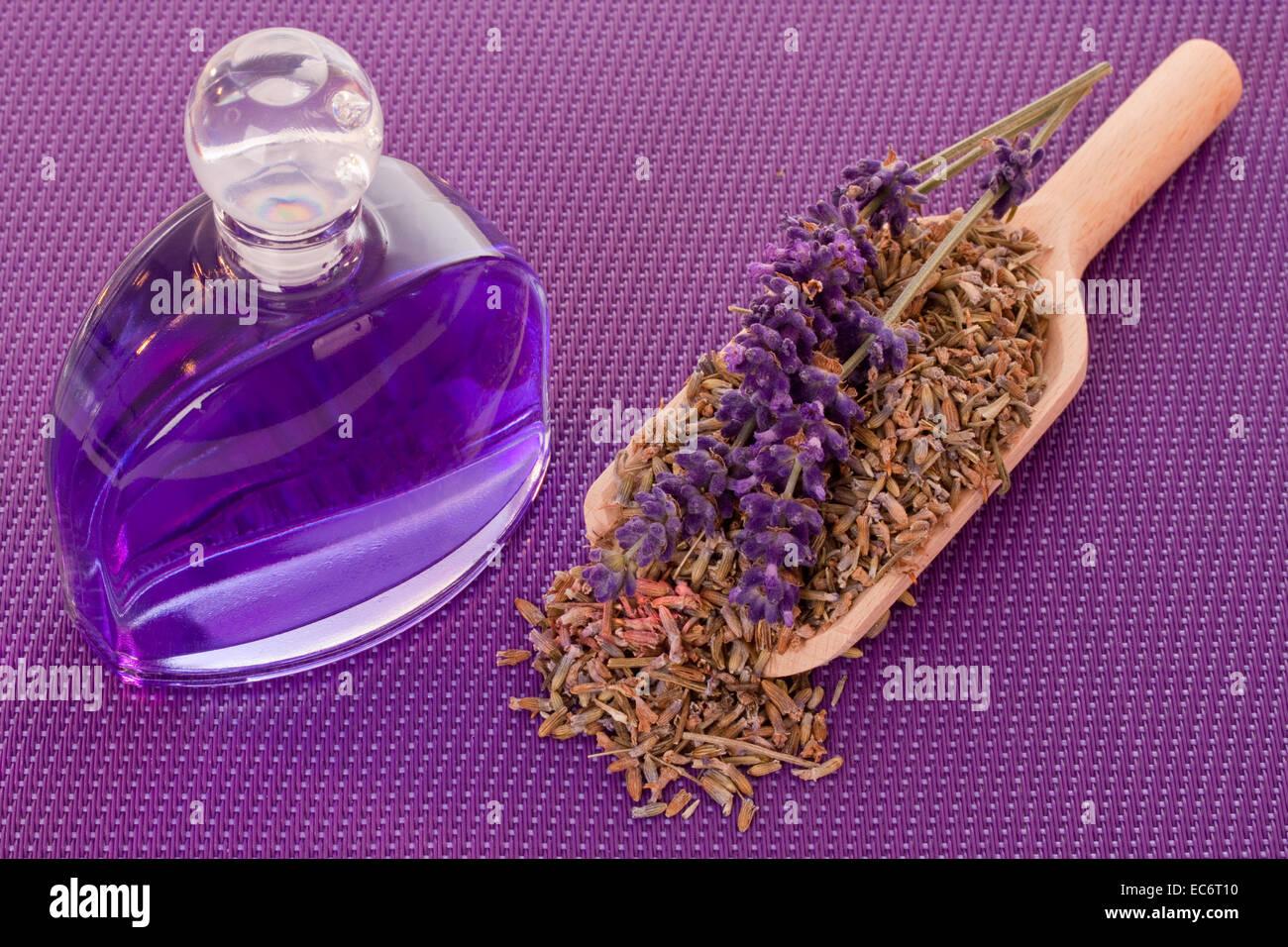 Badezusatz mit Lavendel auf lila Hintergrund Stockbild
