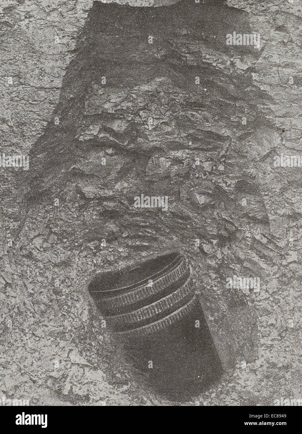Die Schale wurde 10 Metern Tiefe entdeckt. Stockbild