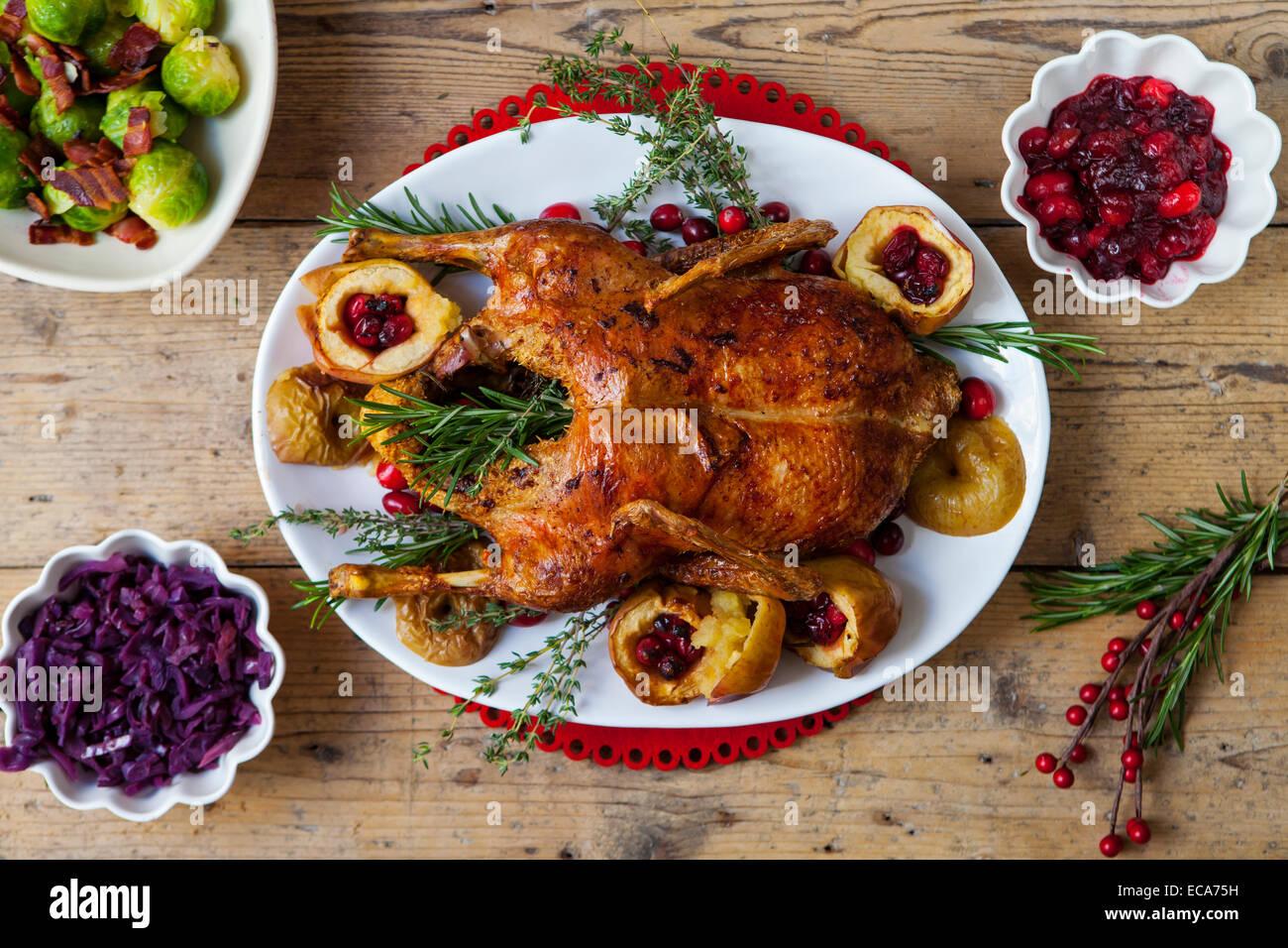 Festliche gebratene Ente mit Äpfeln und Preiselbeeren Stockbild