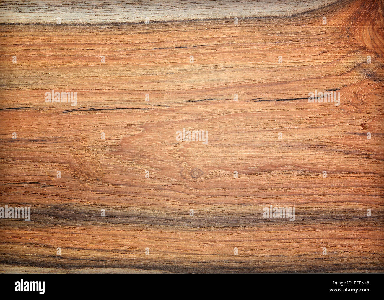 Fußboden Braun Buffel ~ Braun büffel amerikanische geldbörse  farbe palisandro