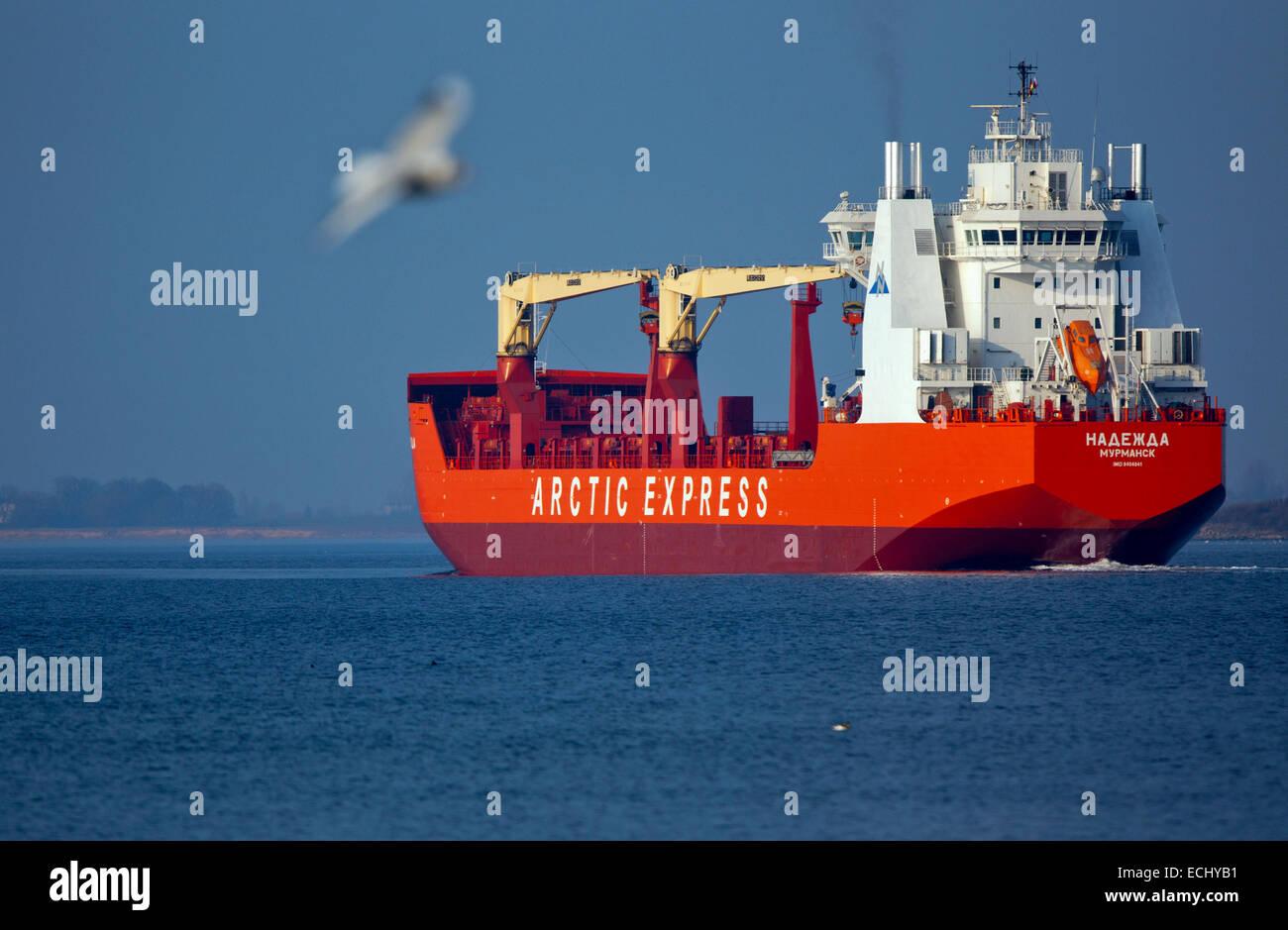 Bauunternehmen Wismar die arktische container frachtschiff nadezha blätter der