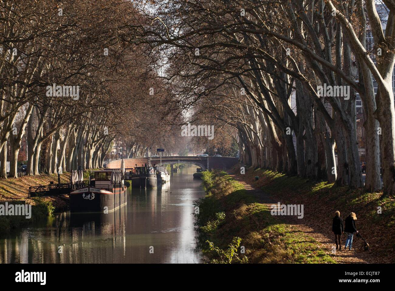 garonne river in toulouse france stockfotos garonne river in toulouse france bilder alamy. Black Bedroom Furniture Sets. Home Design Ideas