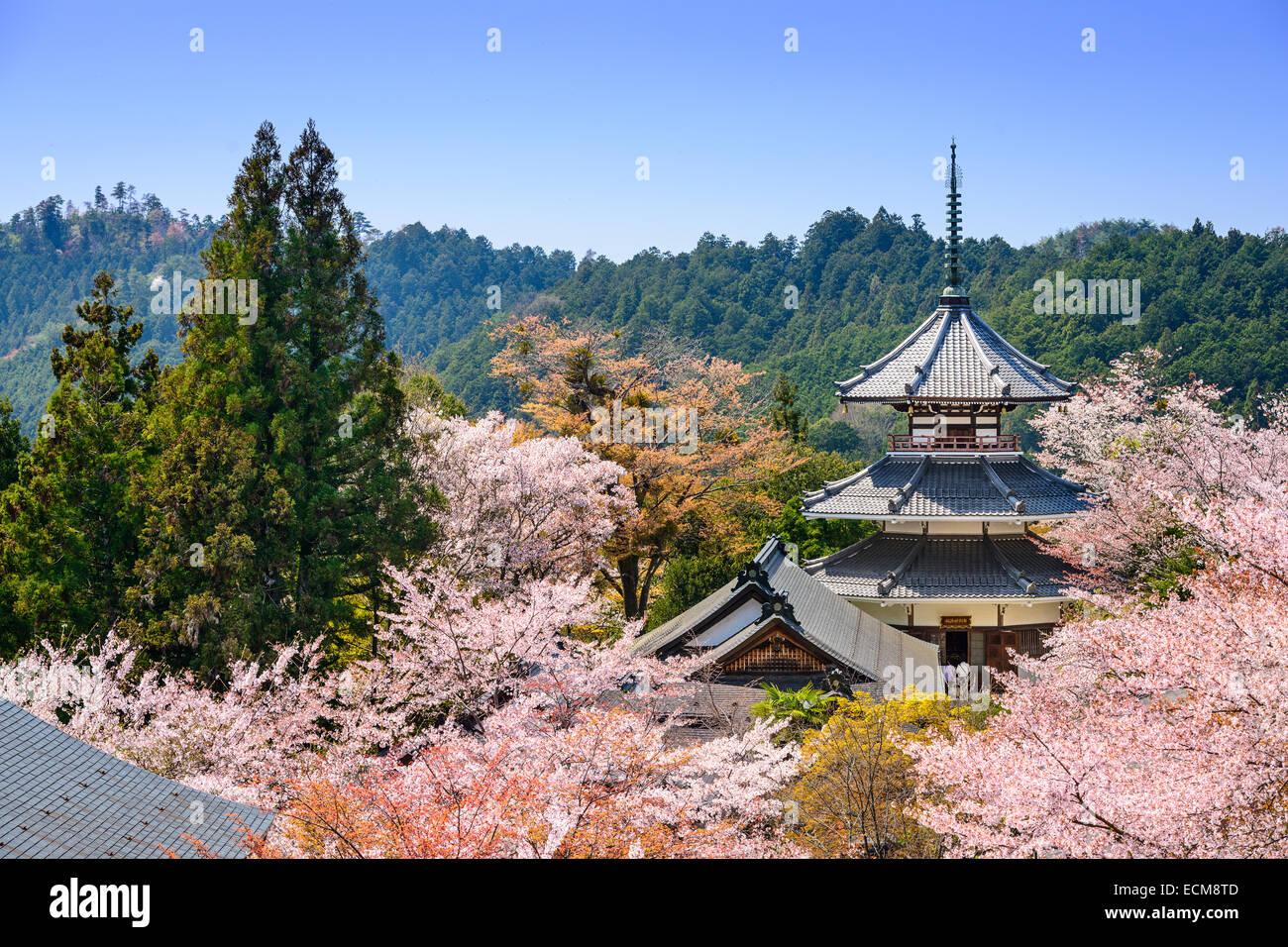 Yoshino, Japan am Kinpusenji Tempel. Stockbild
