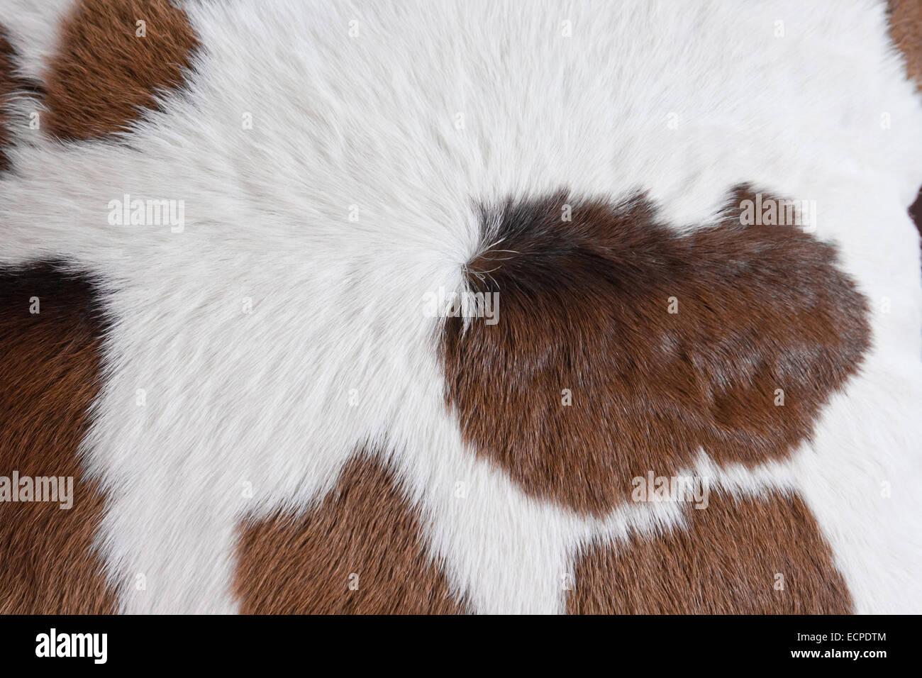 Wunderschön Tierfell Teppich Das Beste Von Fell Mit Kuh Haut Muster Hintergrund Stockbild.