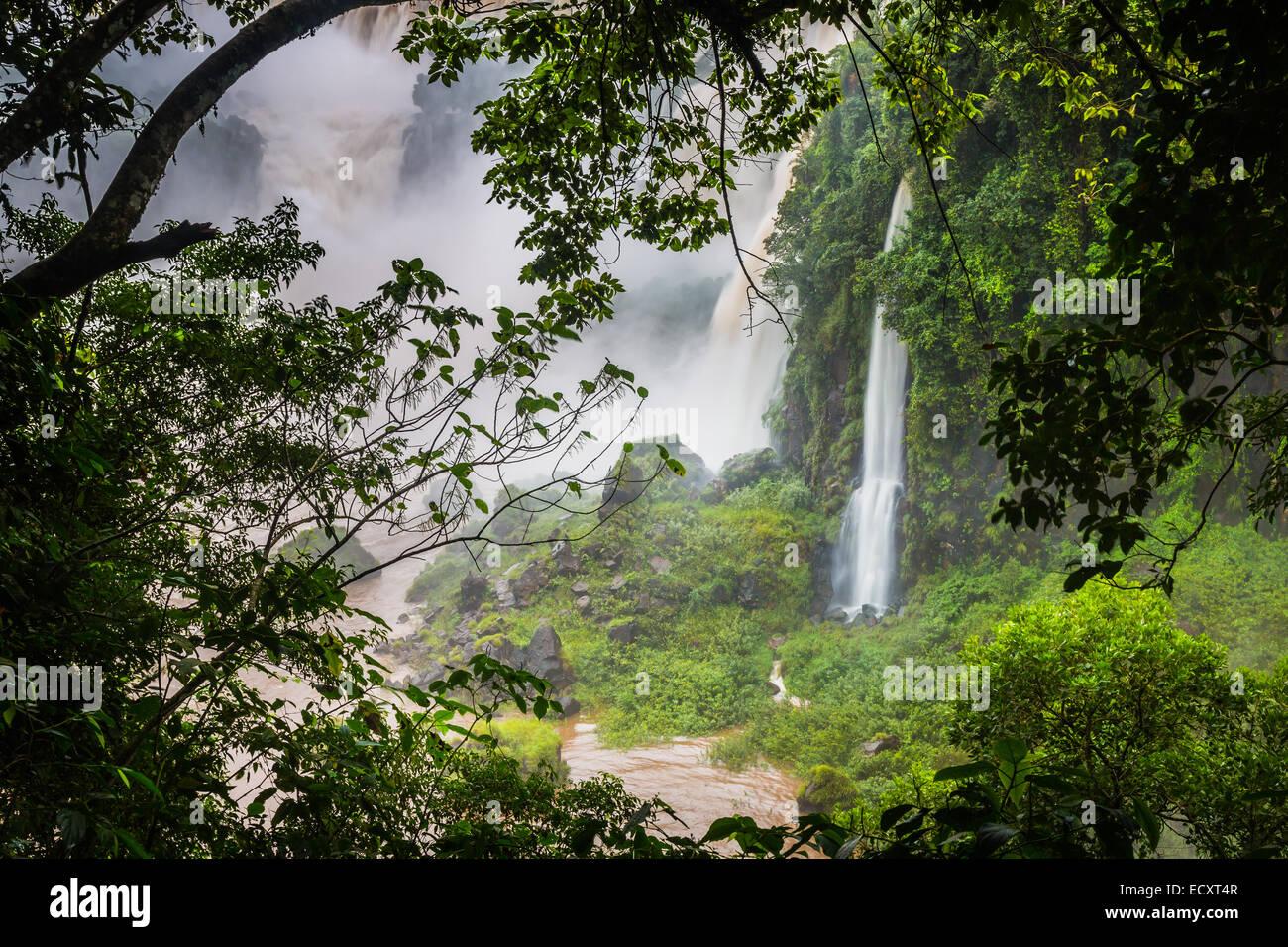 Iguazu-Wasserfälle sind Wasserfälle des Flusses Iguazu an der Grenze zwischen Argentinien und Brasilien Stockbild