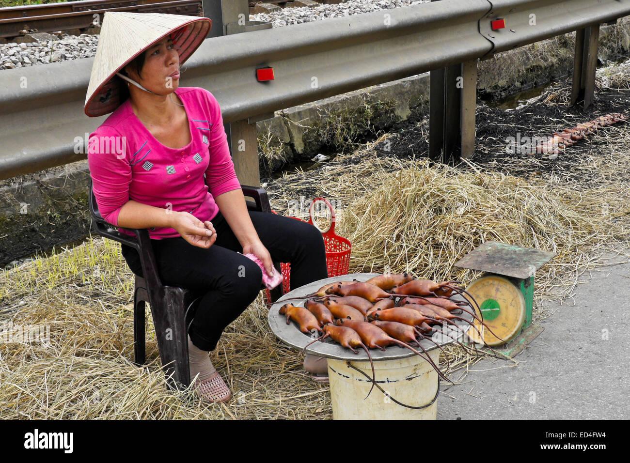 Frau, Kochen und verkaufen Ratten neben Autobahn, Vietnam Stockbild