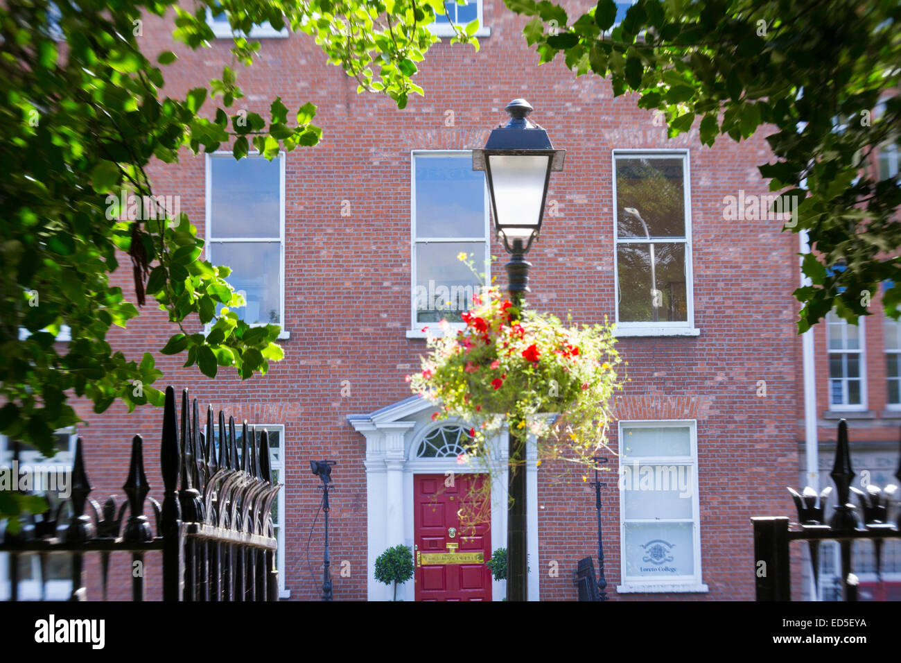 Lampe, geschmückt mit Blumen, umrahmt von Bäumen in der Stadt Dublin ...