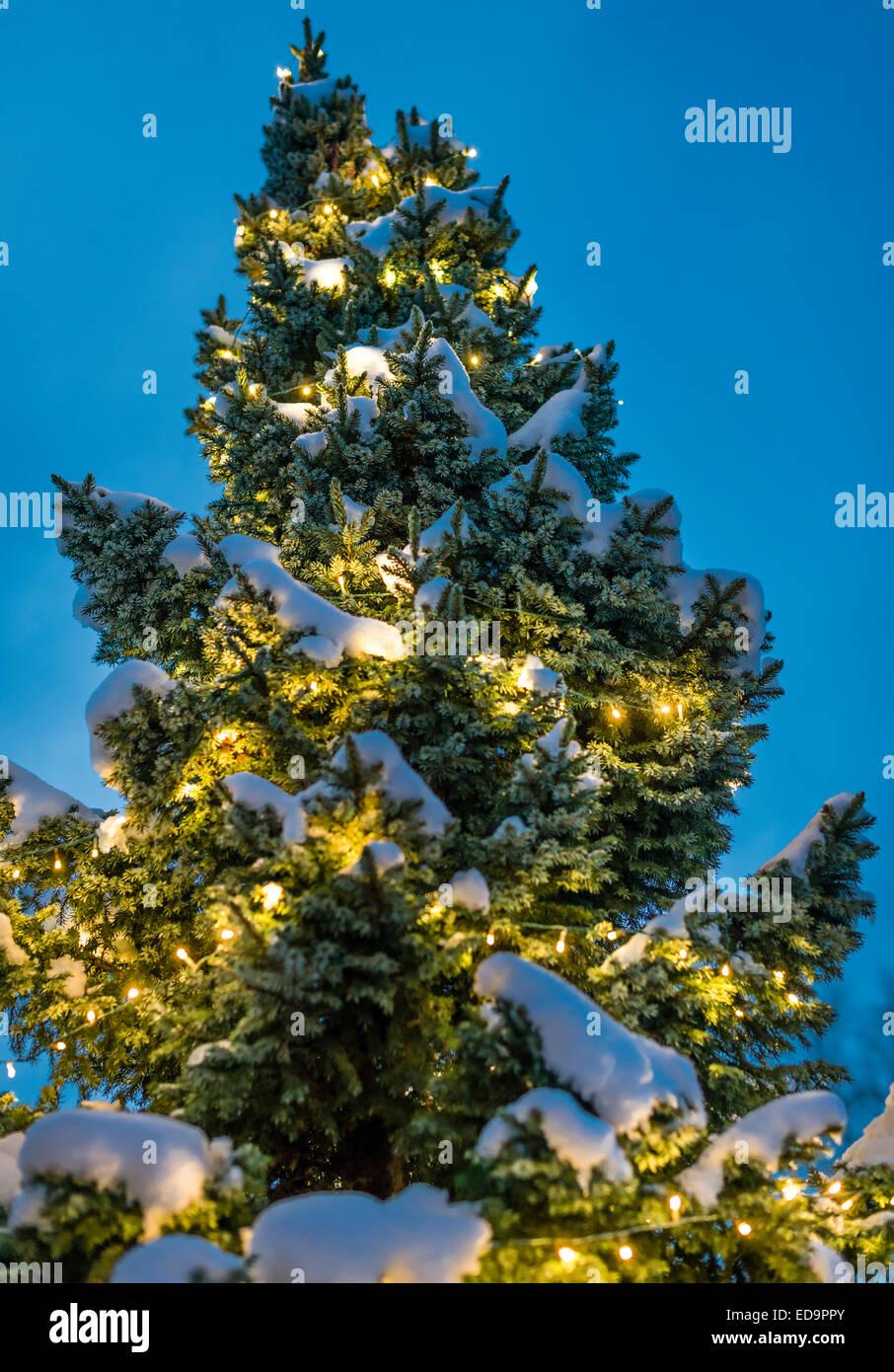 festlich geschm ckten weihnachtsbaum tanne drau en im. Black Bedroom Furniture Sets. Home Design Ideas