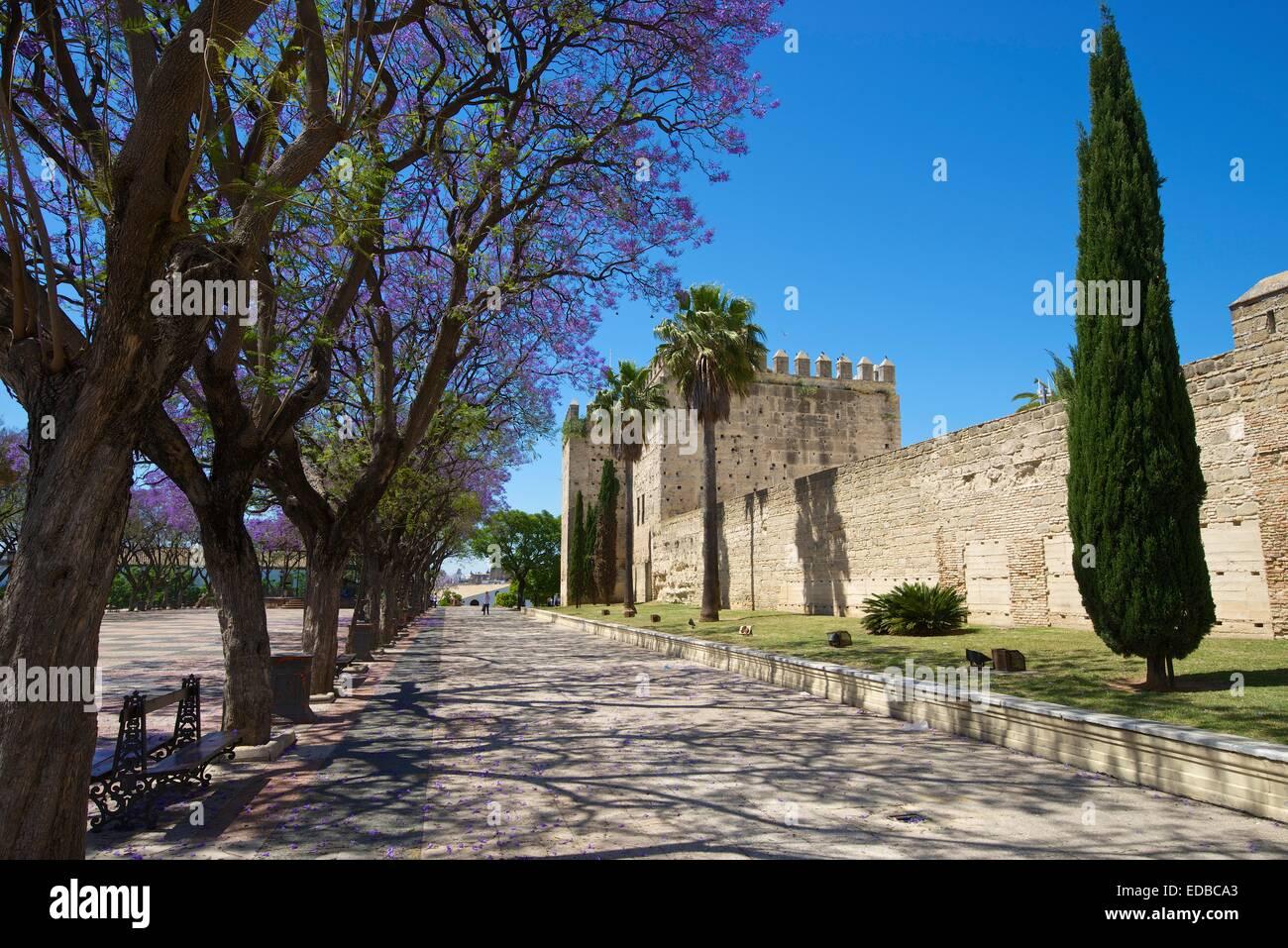Alcazar de Jerez, Jerez De La Frontera, Andalusien, Spanien Stockbild