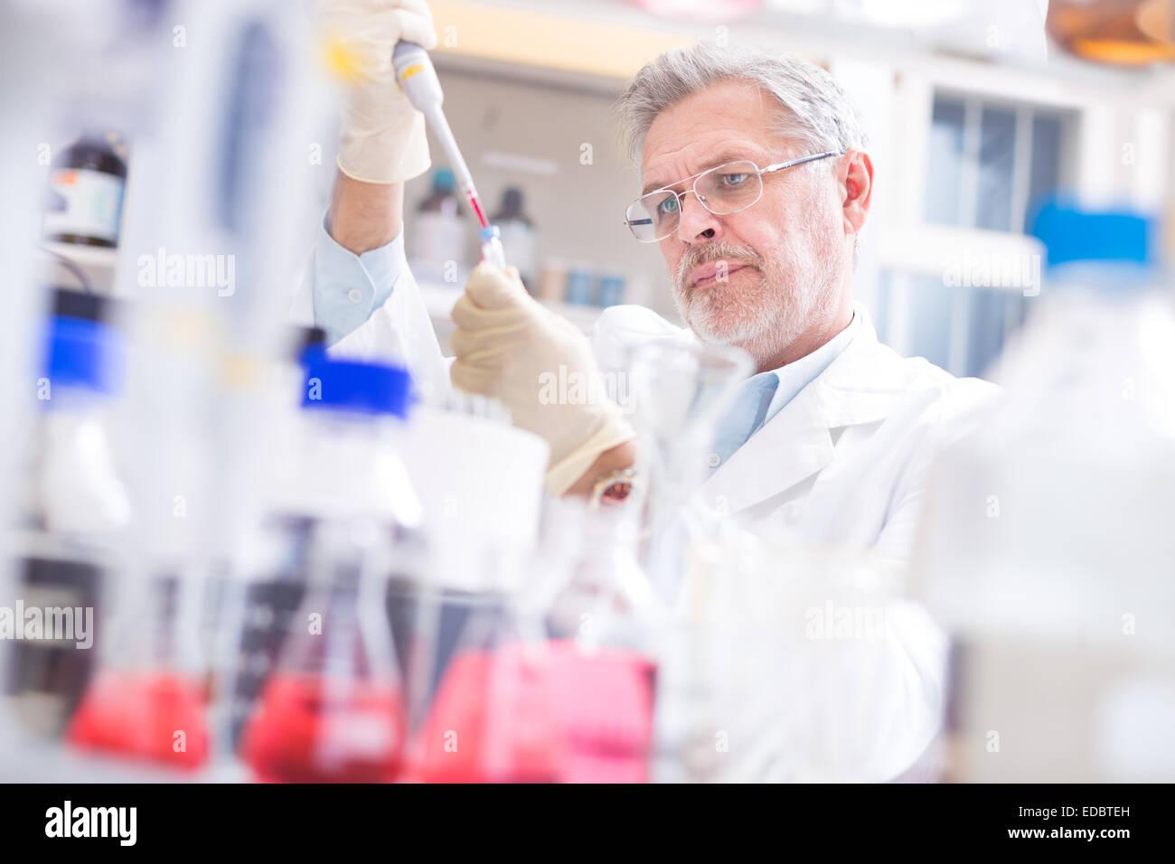 Lebens-Wissenschaftler forschen im Labor. Stockfoto