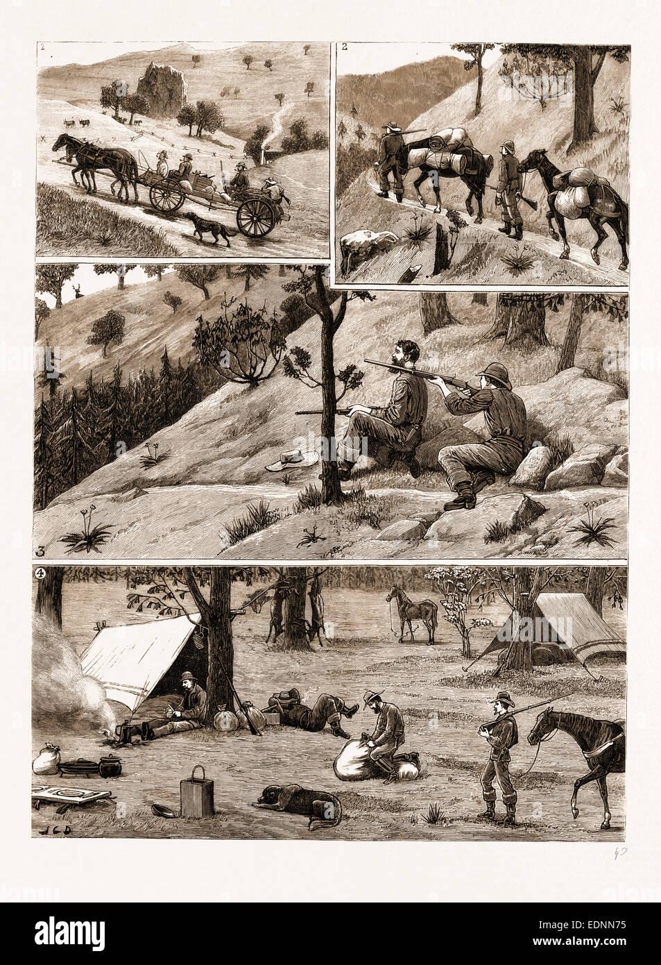 """HIRSCHJAGD IN der """"COAST RANGE"""" MOUNTAINS, Kalifornien: 1. auf dem Weg. 2. bewegliche Lager. (3) eine Stockbild"""