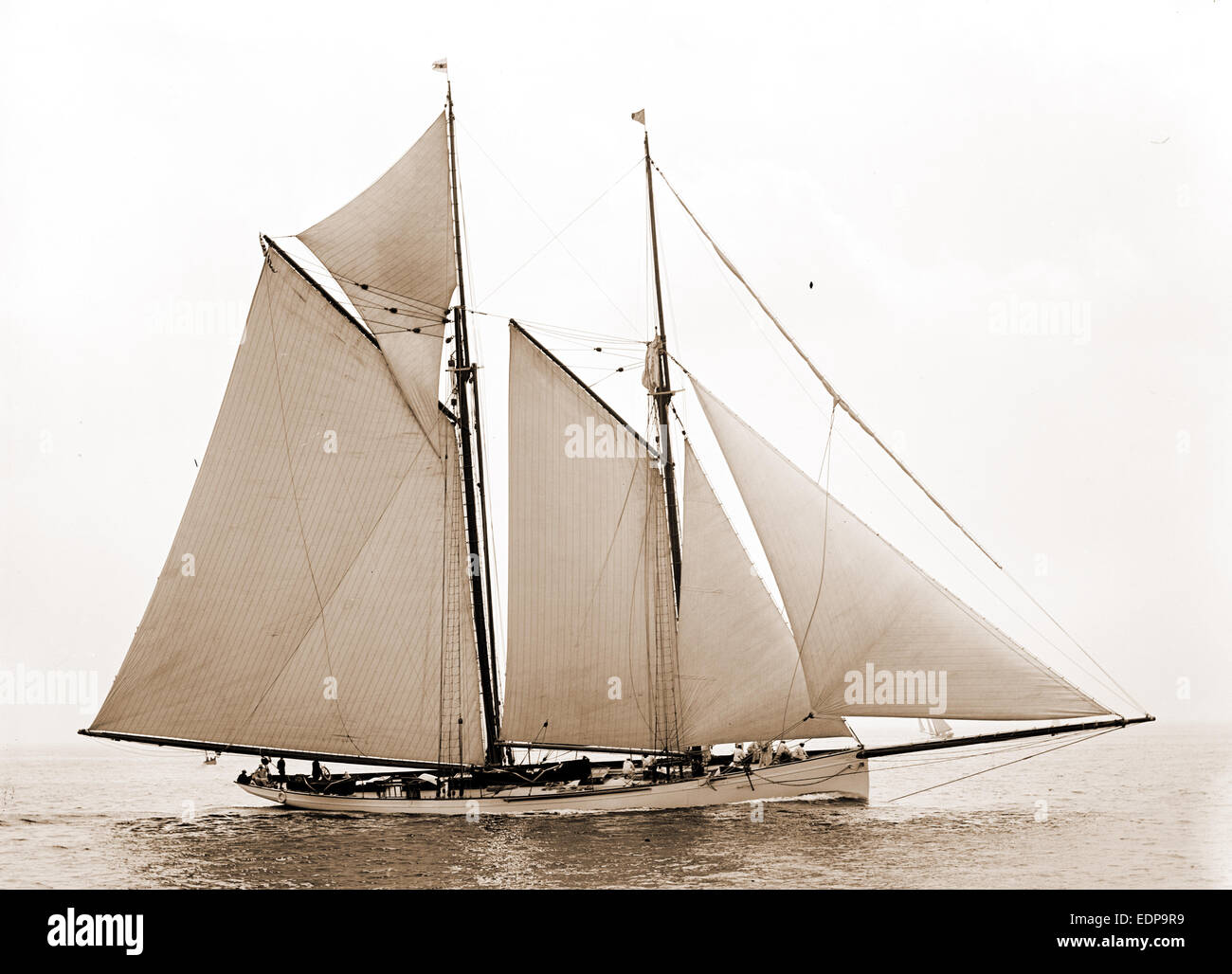 Mayflower, Mayflower (Schoner), Yachten, 1891 Stockfoto