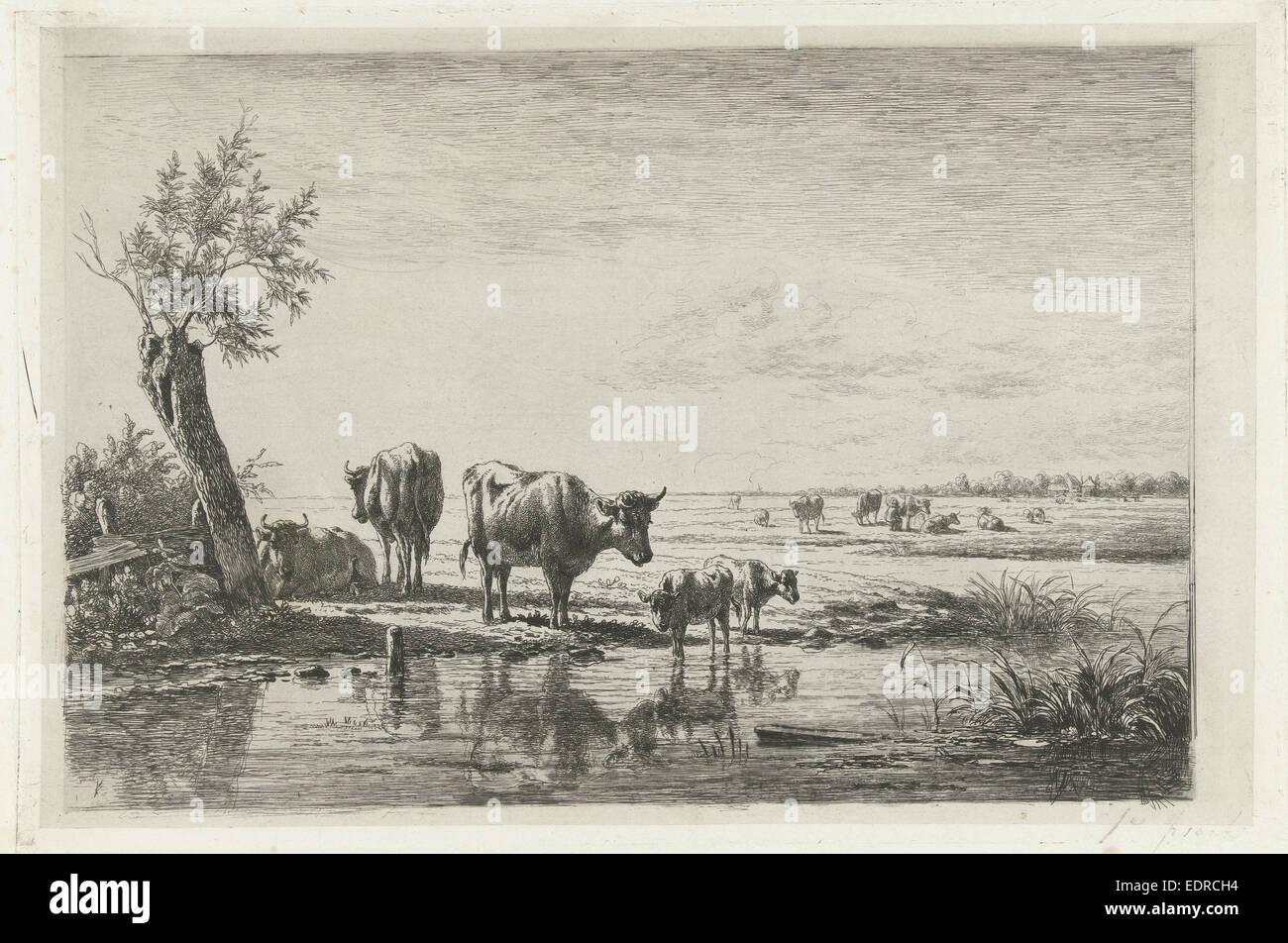 Wiesen mit Kühen am Wasser, Simon van Den Berg, 1822-1891 Stockbild