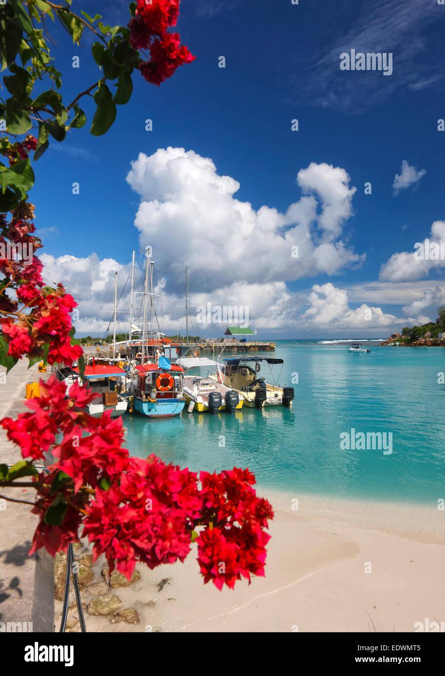 Seychellen, La Digue. Boote im Hafen. Stockbild