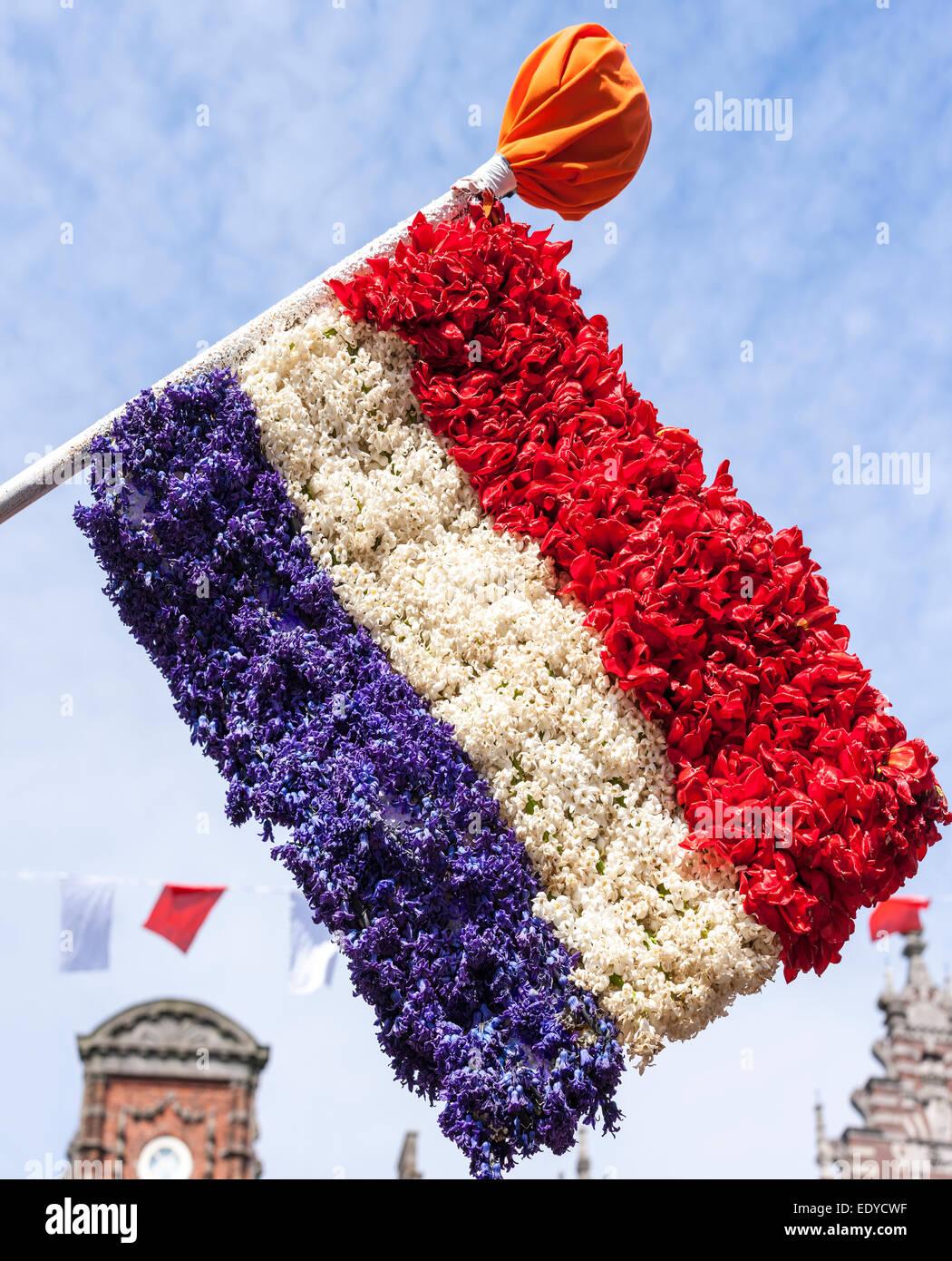Flagge der Niederlande gemacht aus Blumen auf Dutch Flower Parade Festival in Haarlem, Holland. Stockbild