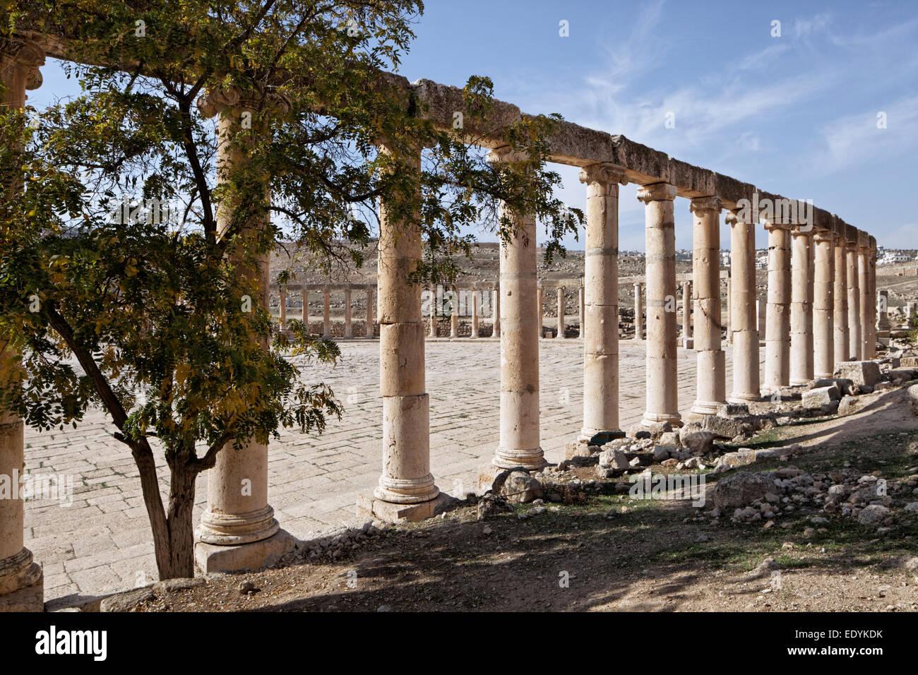 Spalten, ovale Forum, alte römische Stadt von Jerash, Bestandteil der Dekapolis, Jerash, Jerash Governorate, Stockbild