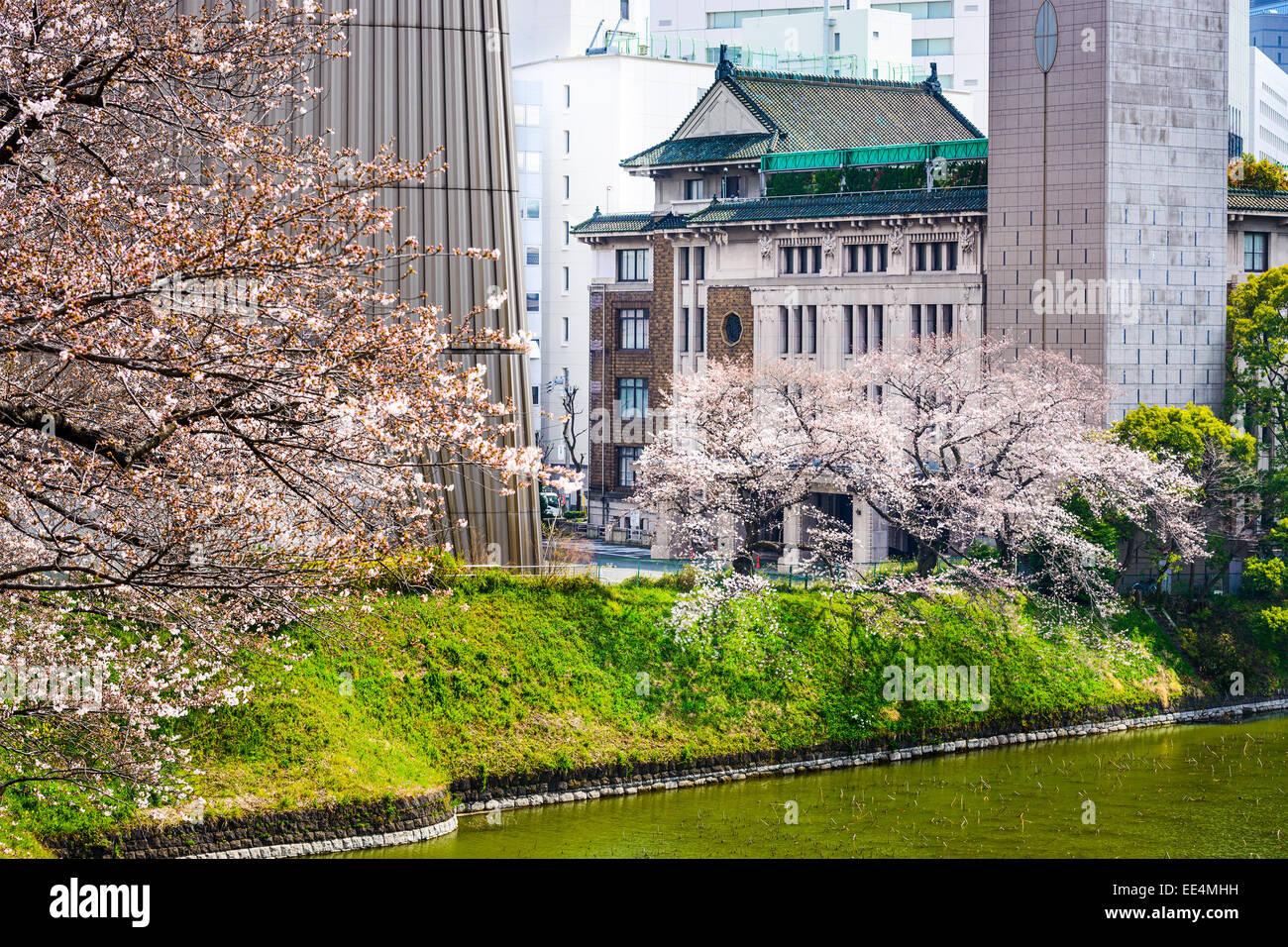 Tokyo, Japan Ansicht von Gebäuden rund um Chidorigafuchi Graben im Frühling. Stockfoto