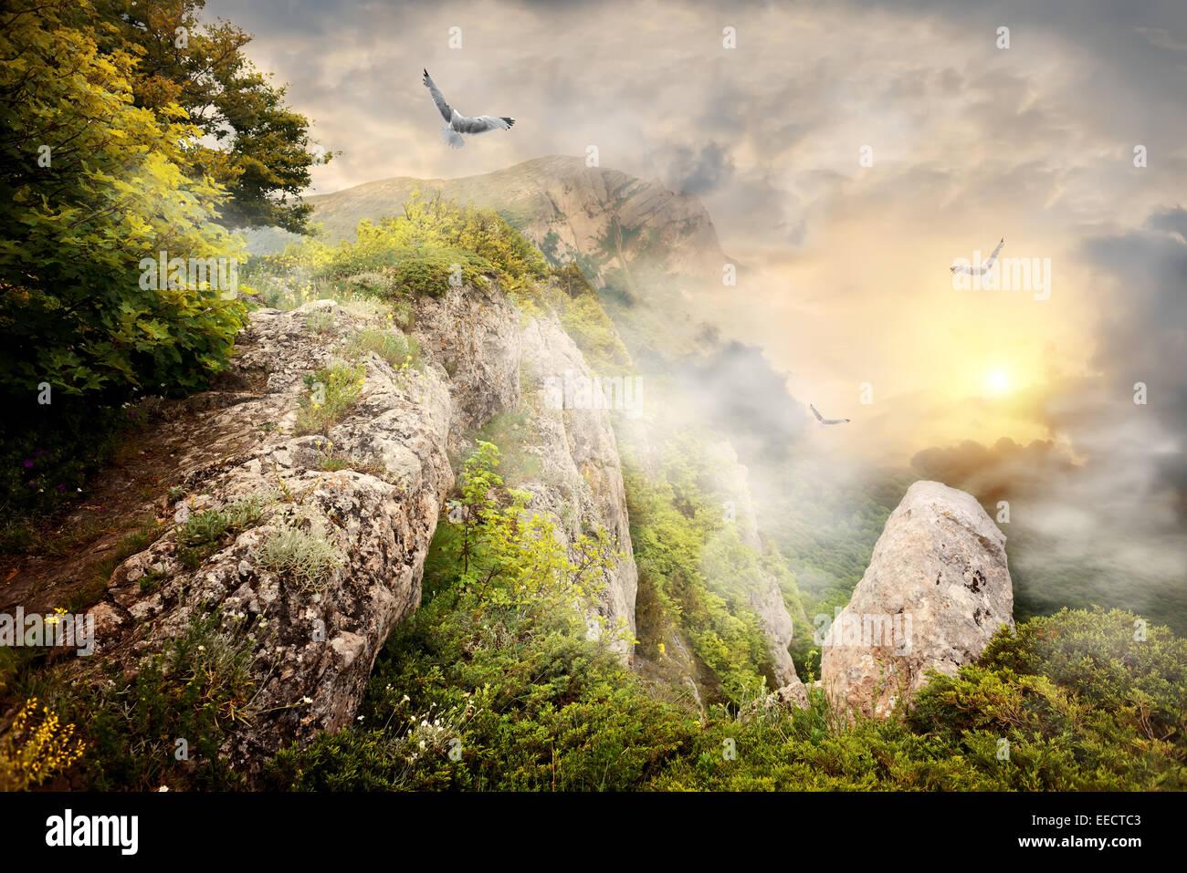 Morgennebel in den Bergen und große Vögel Stockbild