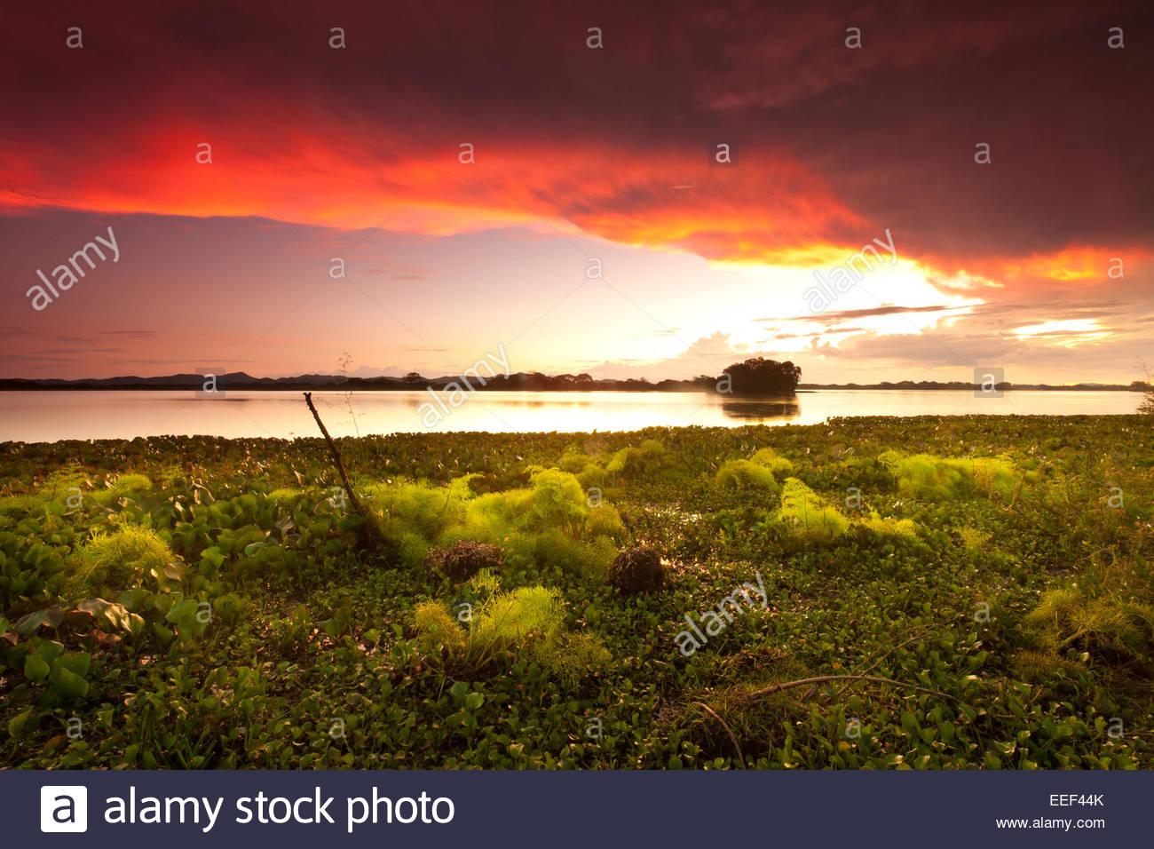 Bunte Wolken bei Sonnenuntergang am See von Refugio de Vida Silvestre Cienage las Macanas Nature Reserve, Republik Panama. Stockfoto