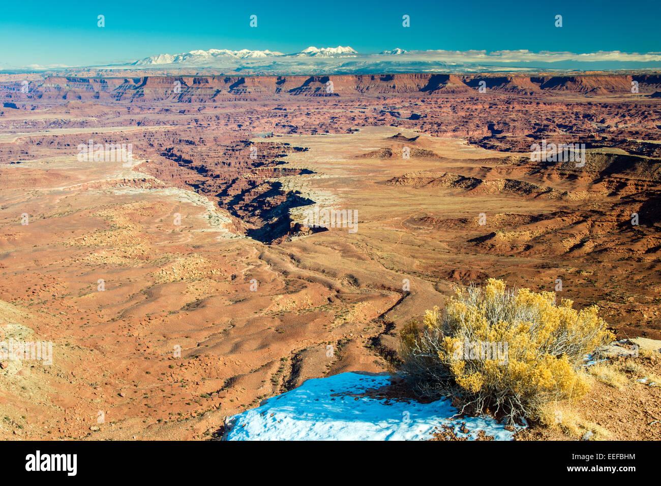Grand View Point übersehen im Winter schneebedeckten La Sal Mountains im Hintergrund, Canyonlands National Stockbild