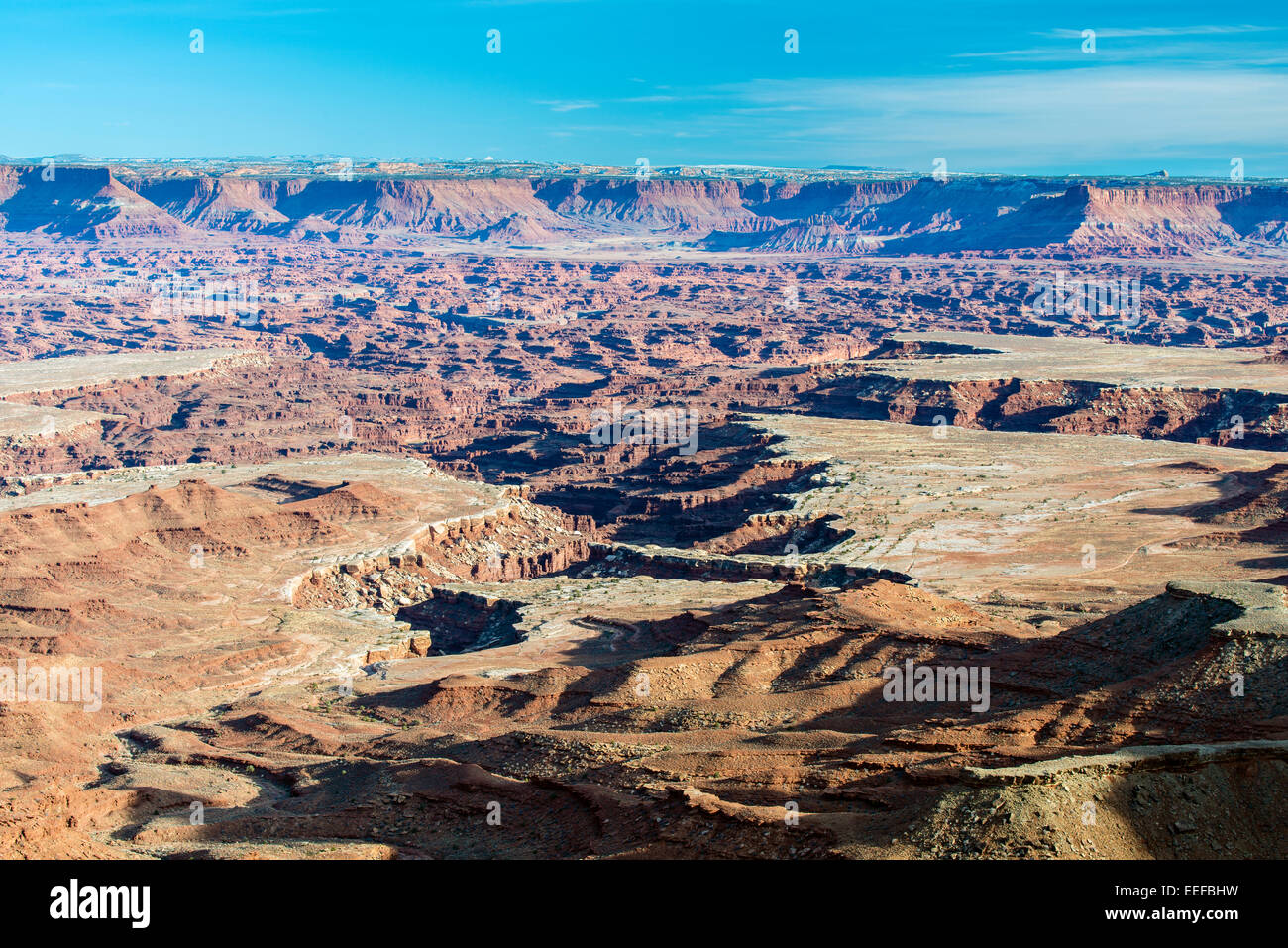 Grand View Point Overlook, Canyonlands National Park, Utah, USA Stockbild