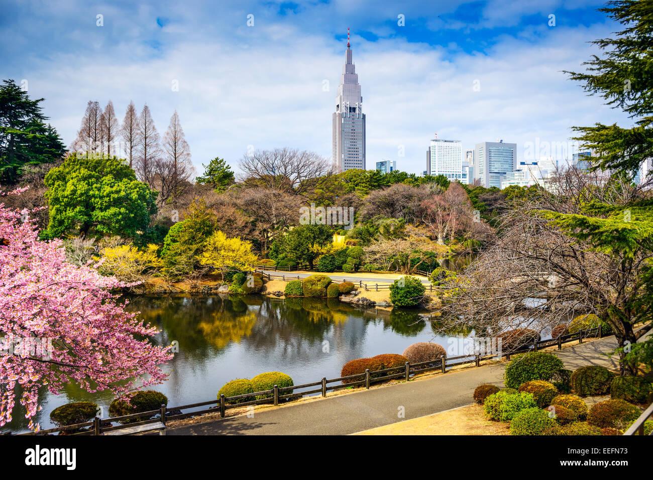 Shinjuku Gyoen, Tokyo, Japan im Frühjahr. Stockbild