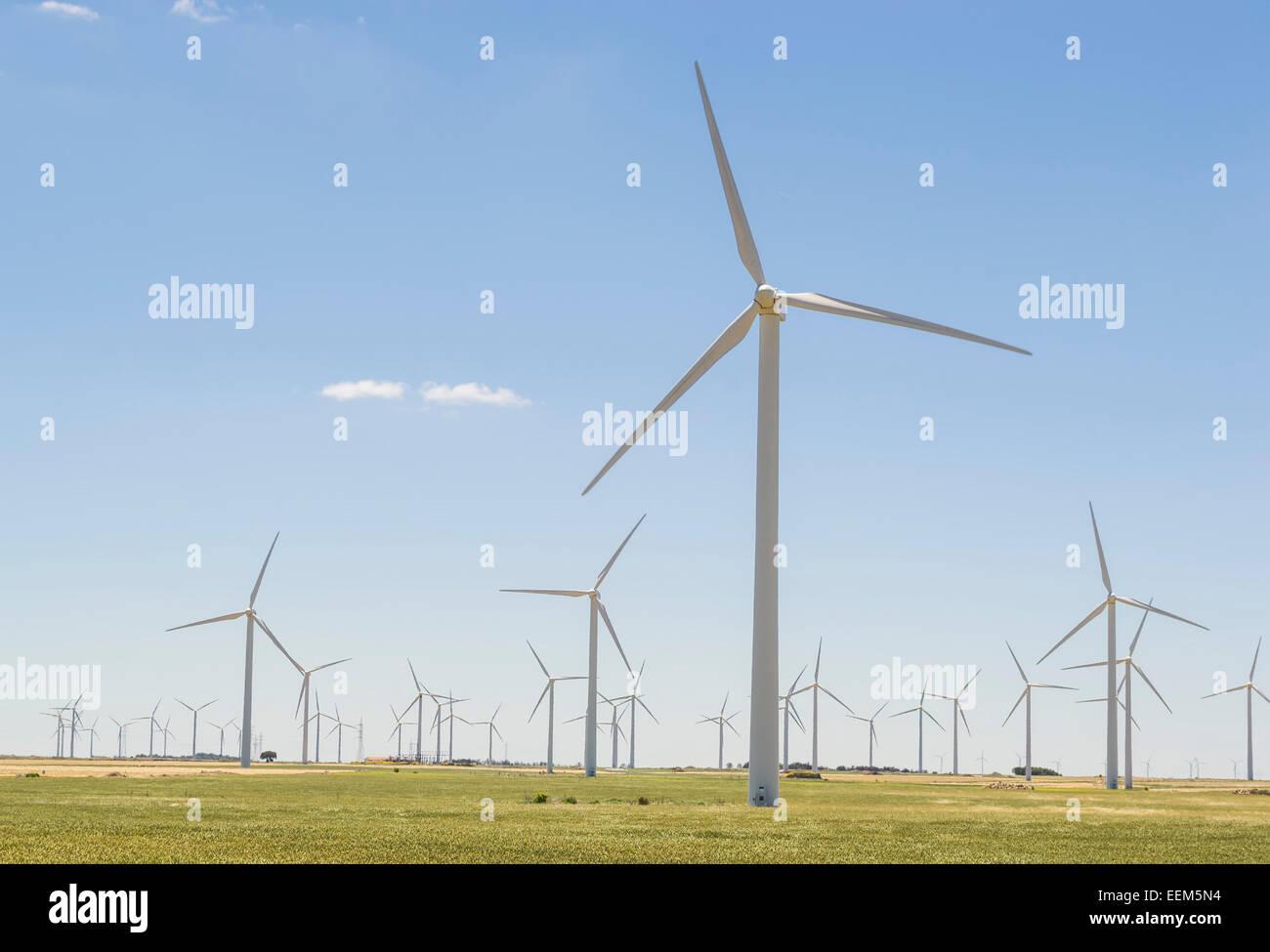 Wind Turbine Netzwerk, verteilt über ein weites Gebiet Ernte Windkraft und Umwandlung in Strom Stockbild