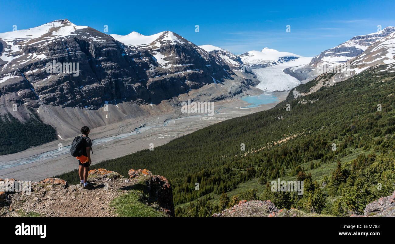 Kanada, Alberta, Banff Nationalpark, Saskatchewan Gletscher und Tal, Canadian Rockies, Wanderer betrachten vom Berg Stockbild