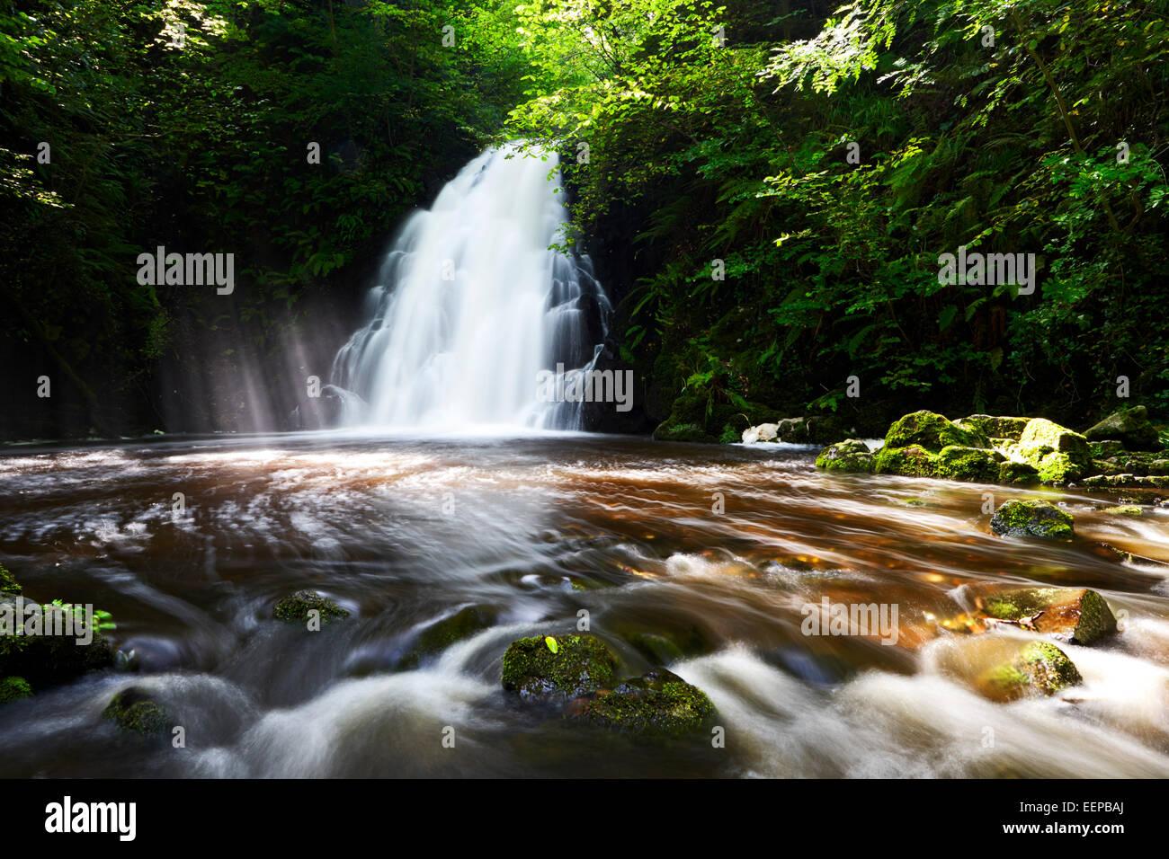 Glenoe Wasserfall in County Antrim Irland Stockbild