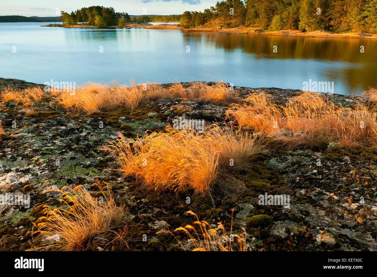 Sommerabend auf der Insel im See Brattholmen Råde Vansjø, Kommune, Østfold fylke, Norwegen. Stockbild