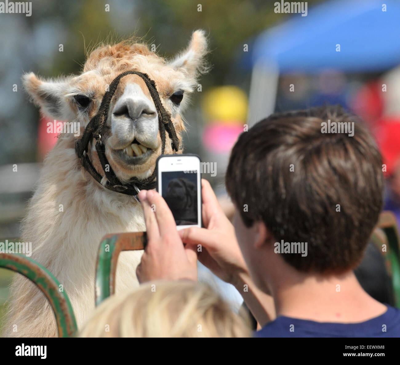 Spiffy Stockfotos & Spiffy Bilder - Alamy